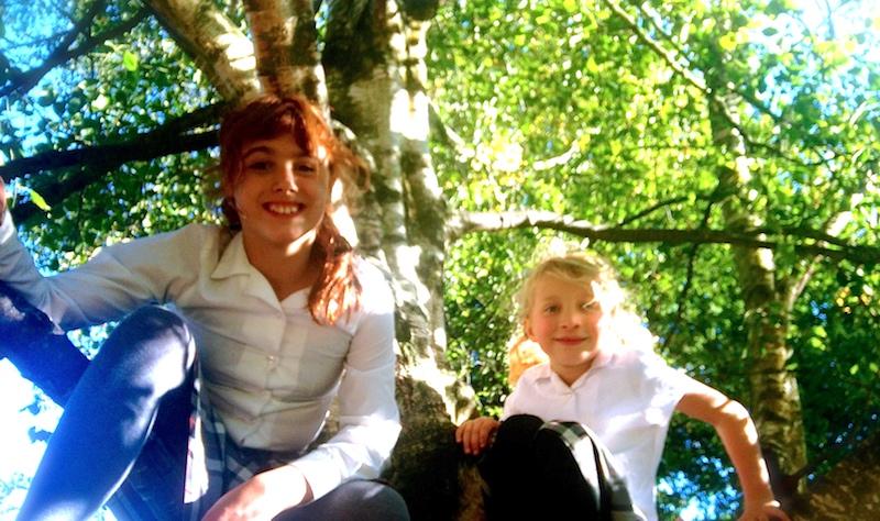 tree climbing at sompting abbotts.jpg