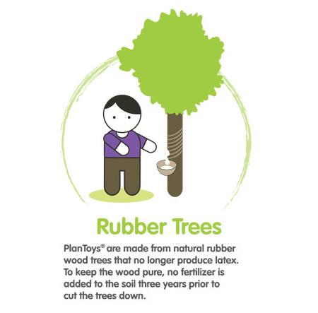 Rubberwood.jpg