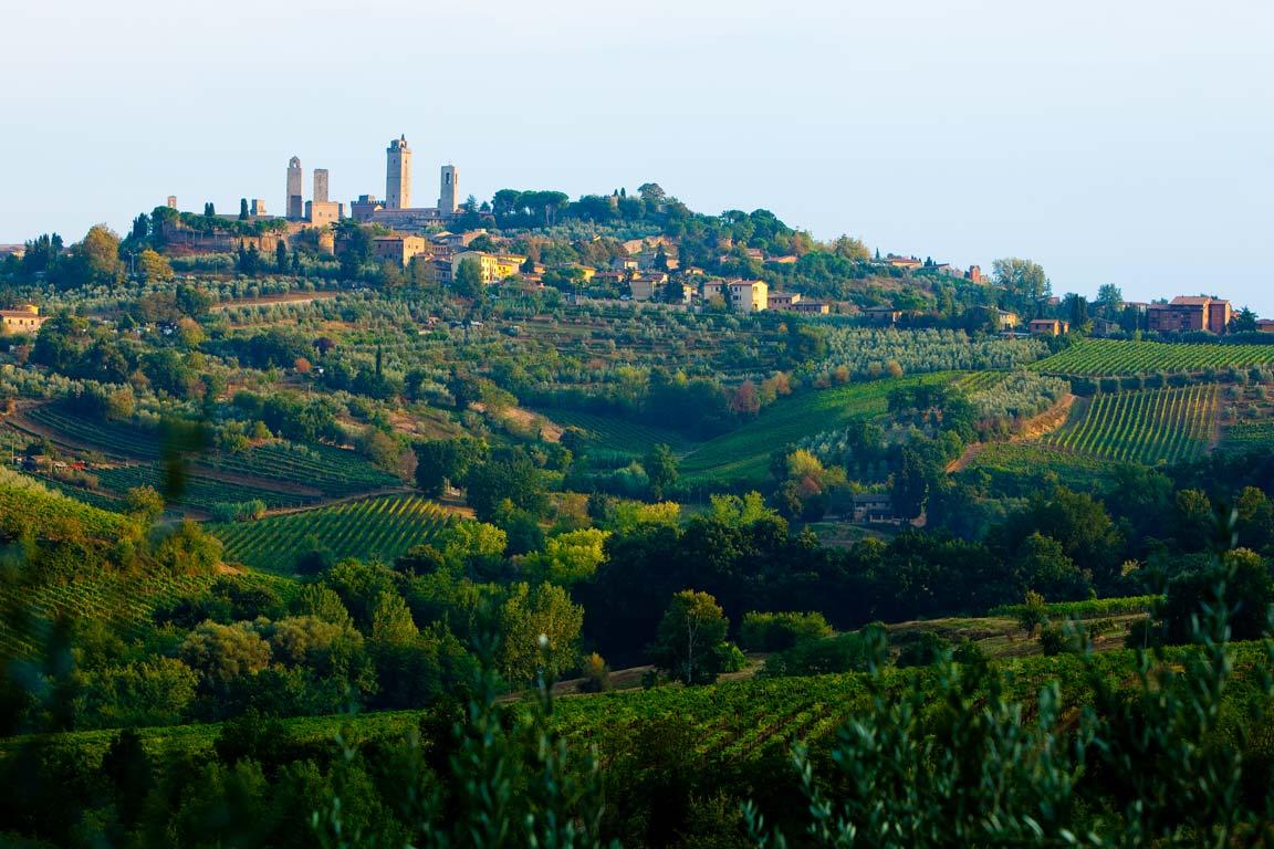 blog_viva-italia_hillside-tuscany.jpg
