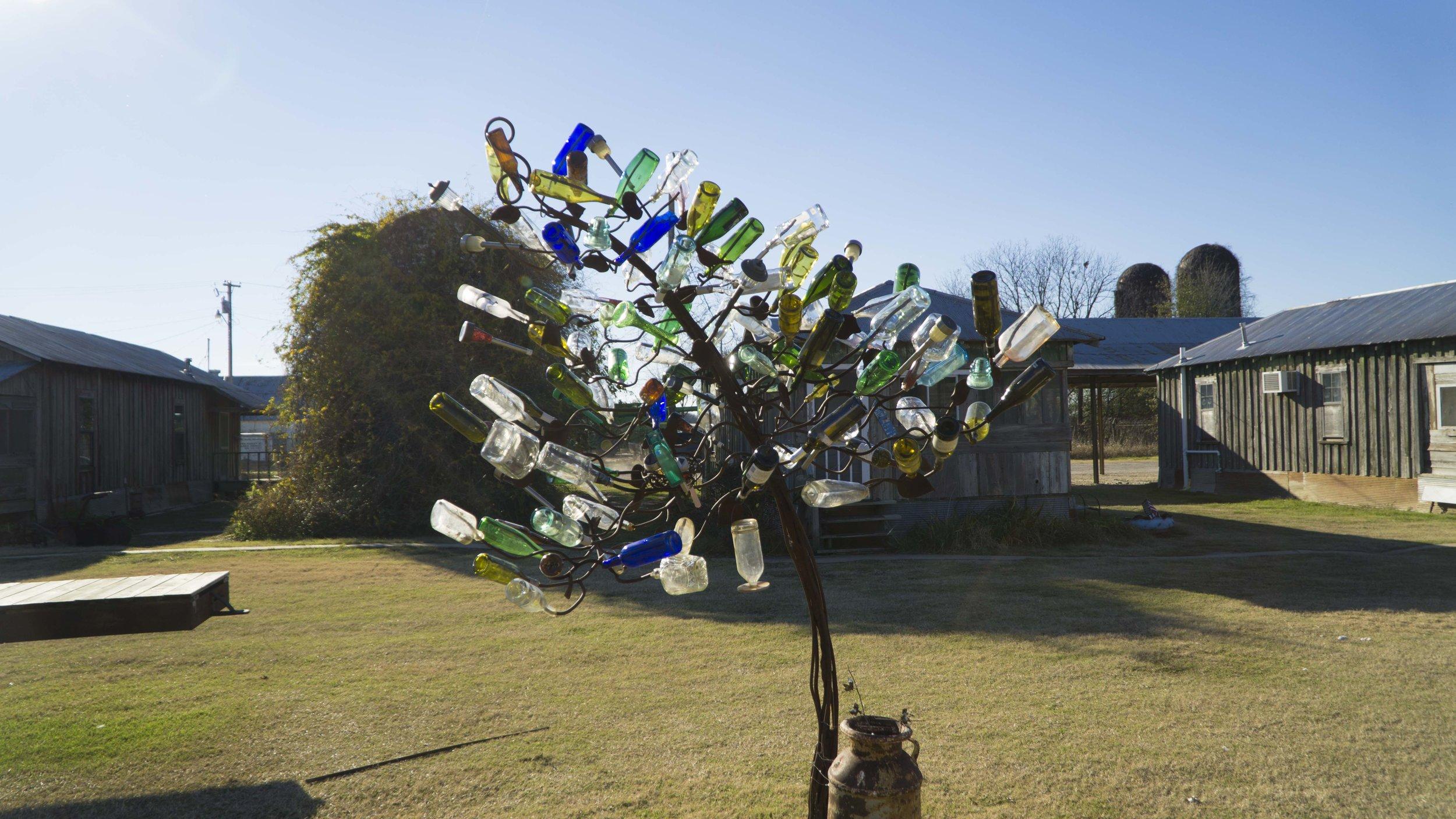 Bottle Tree 2.JPG