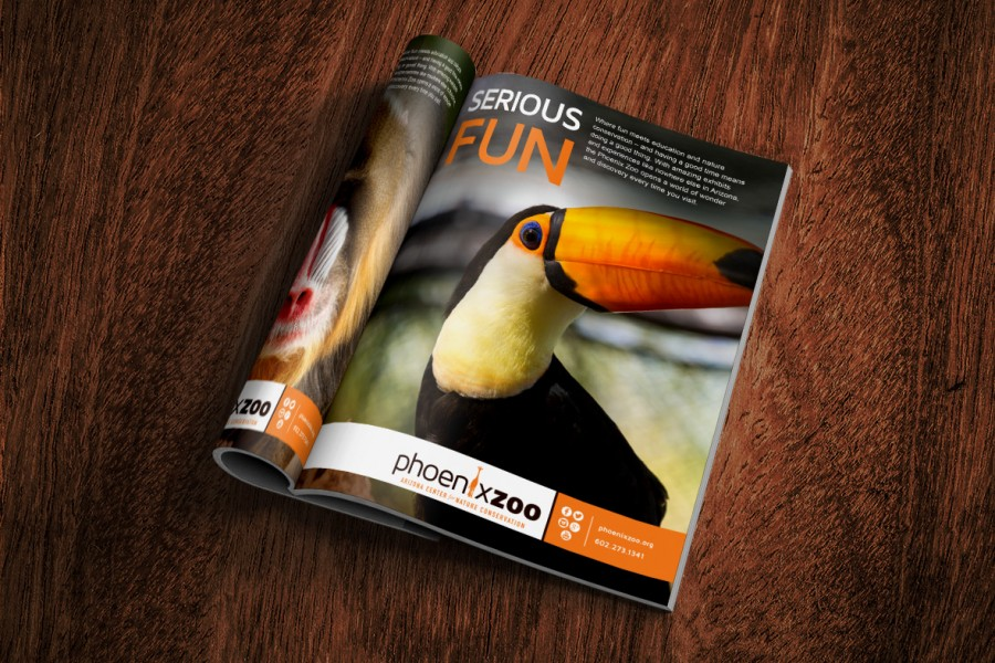 Print Design & Out-Of-Home Marketing