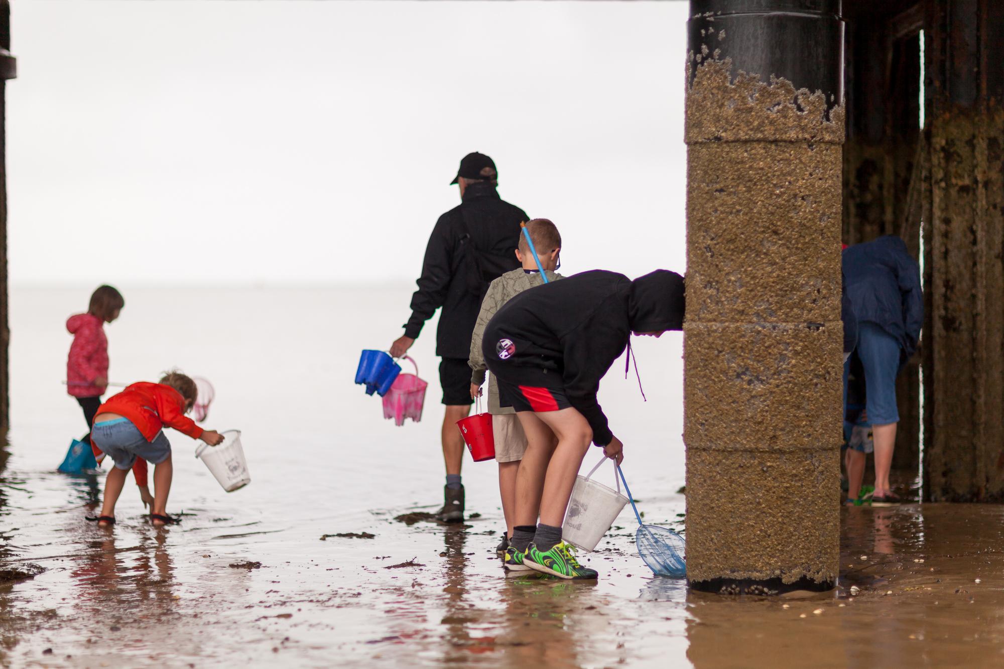 Under The Pier 2016 Image Julian Winslow (3).jpg