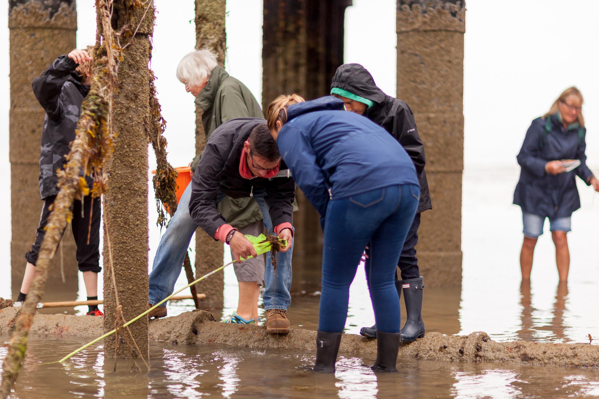 Under The Pier 2016 Image Julian Winslow (26).jpg