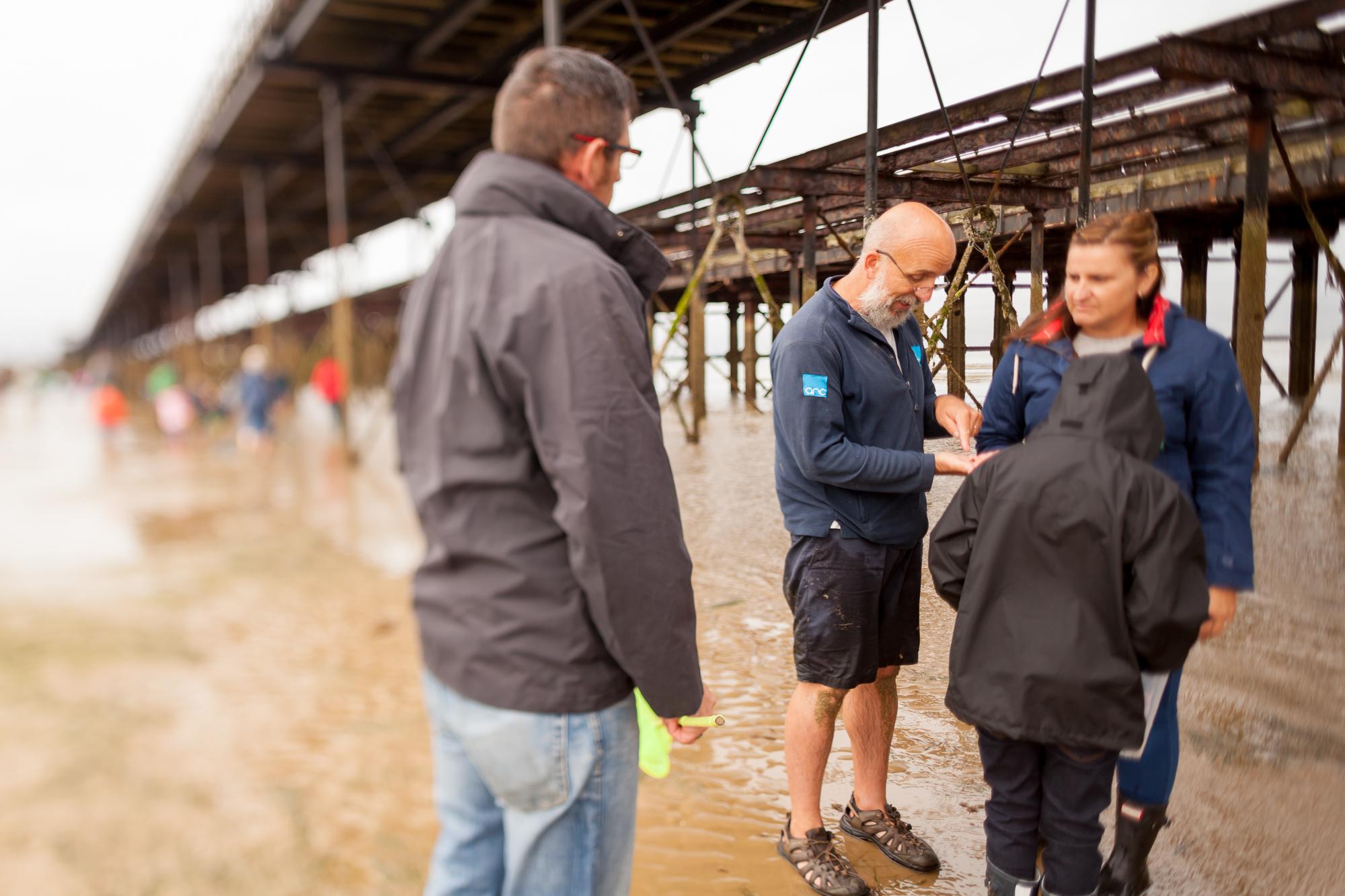 Under The Pier 2016 Image Julian Winslow (68).jpg