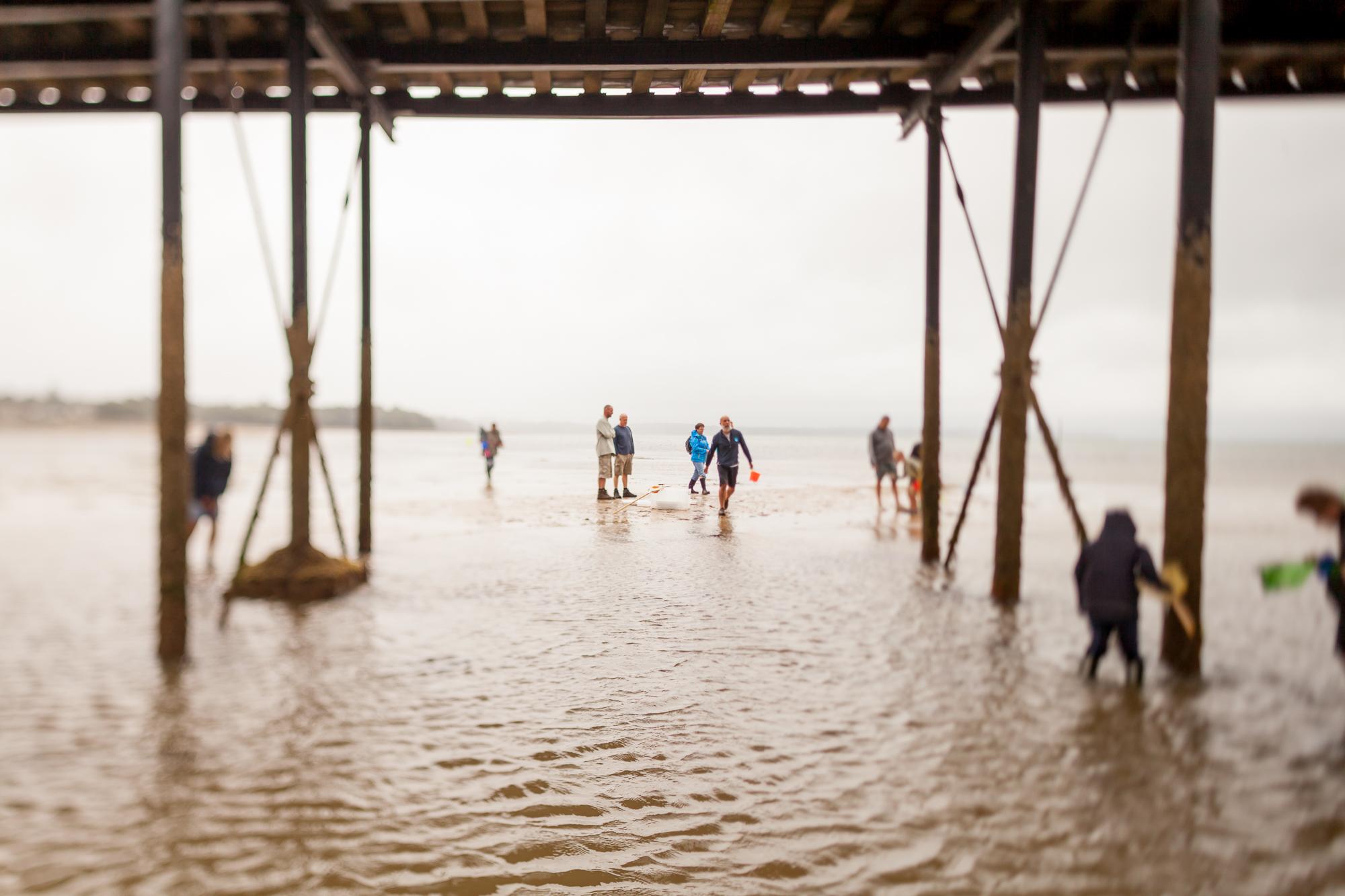 Under The Pier 2016 Image Julian Winslow (71).jpg