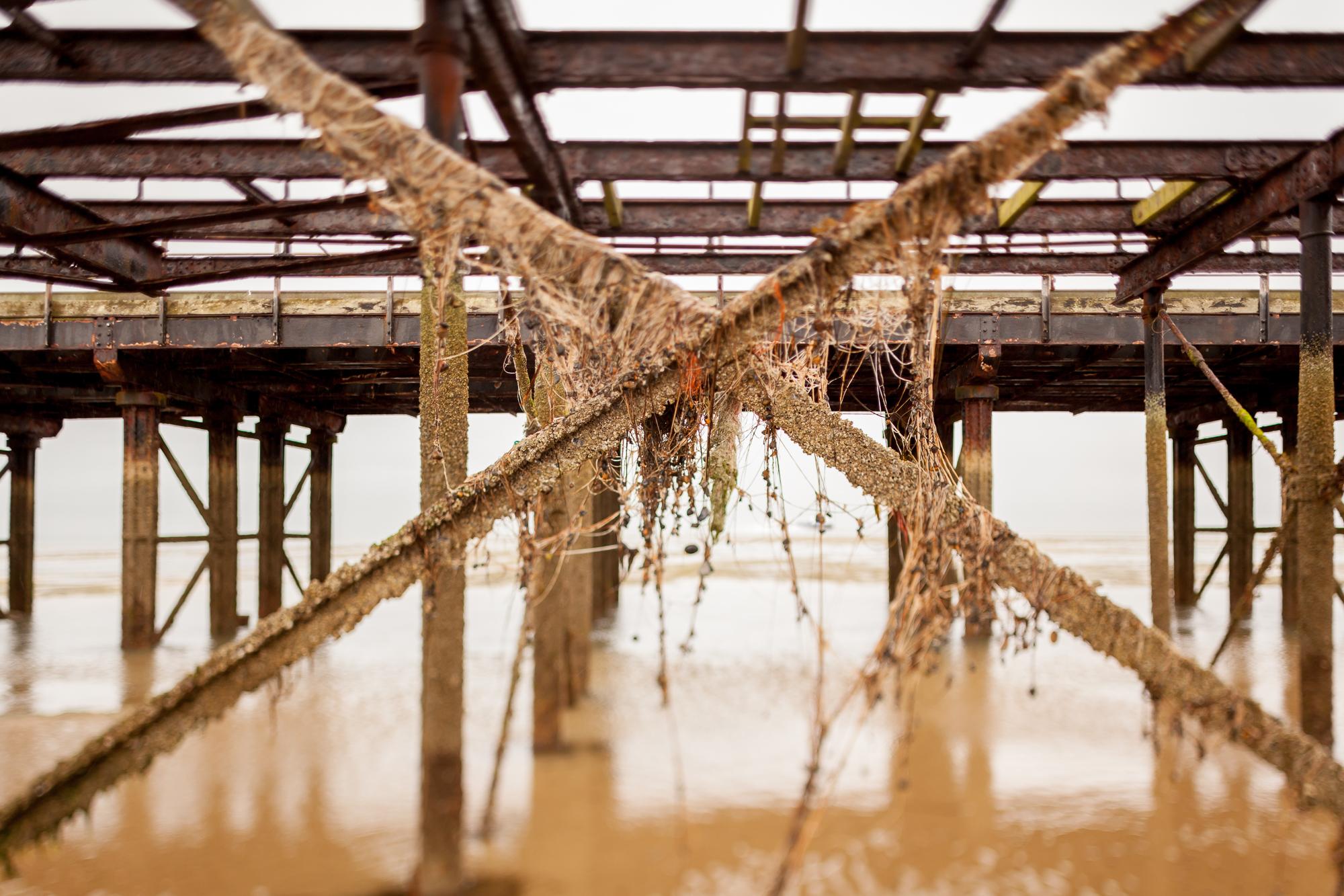 Under The Pier 2016 Image Julian Winslow (74).jpg