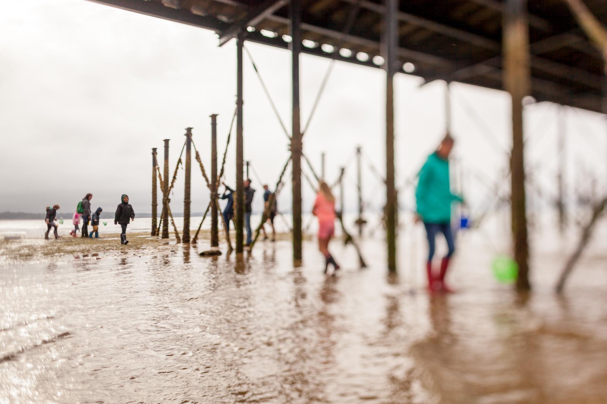 Under The Pier 2016 Image Julian Winslow (83).jpg