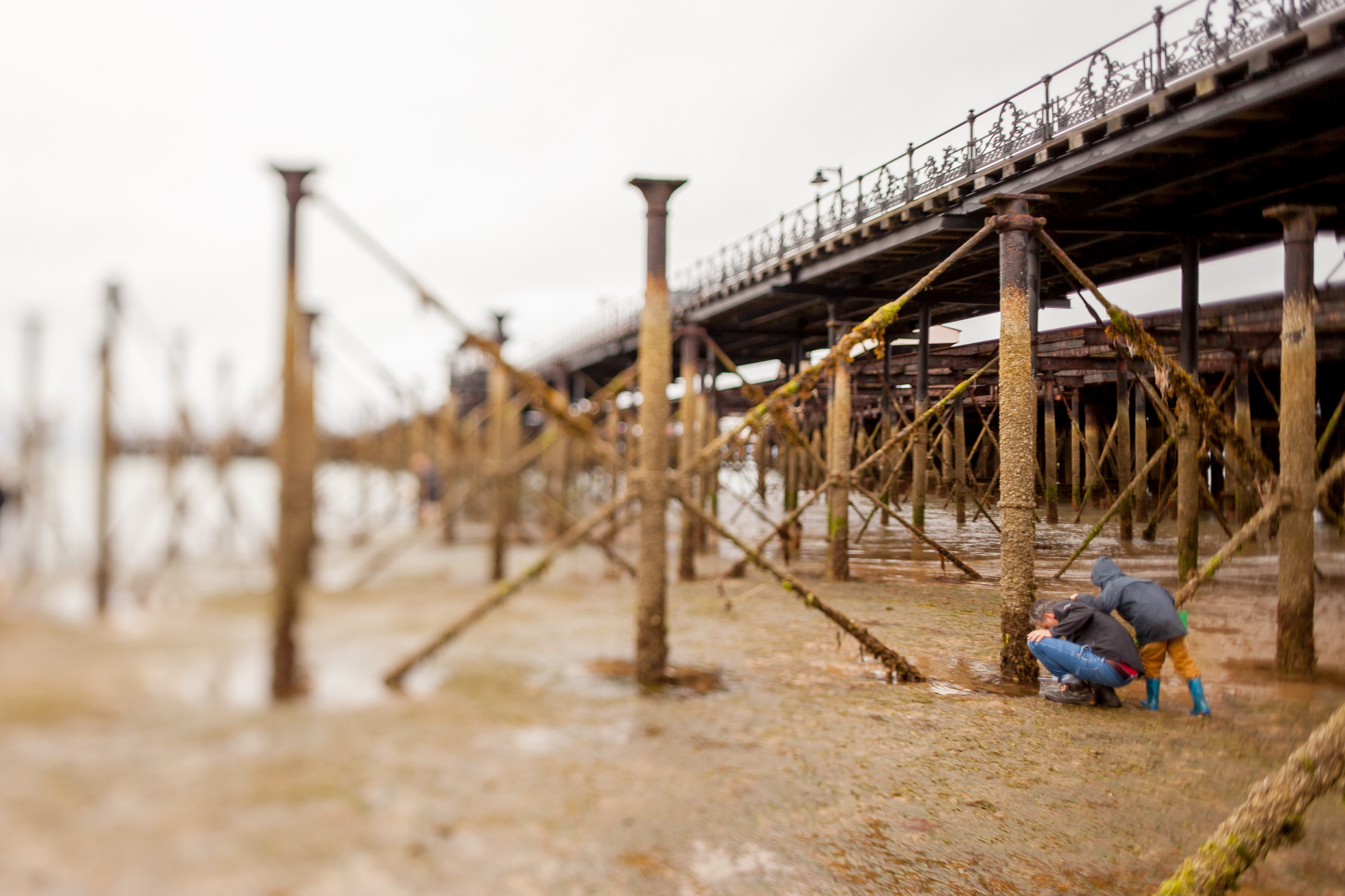 Under The Pier 2016 Image Julian Winslow (92).jpg