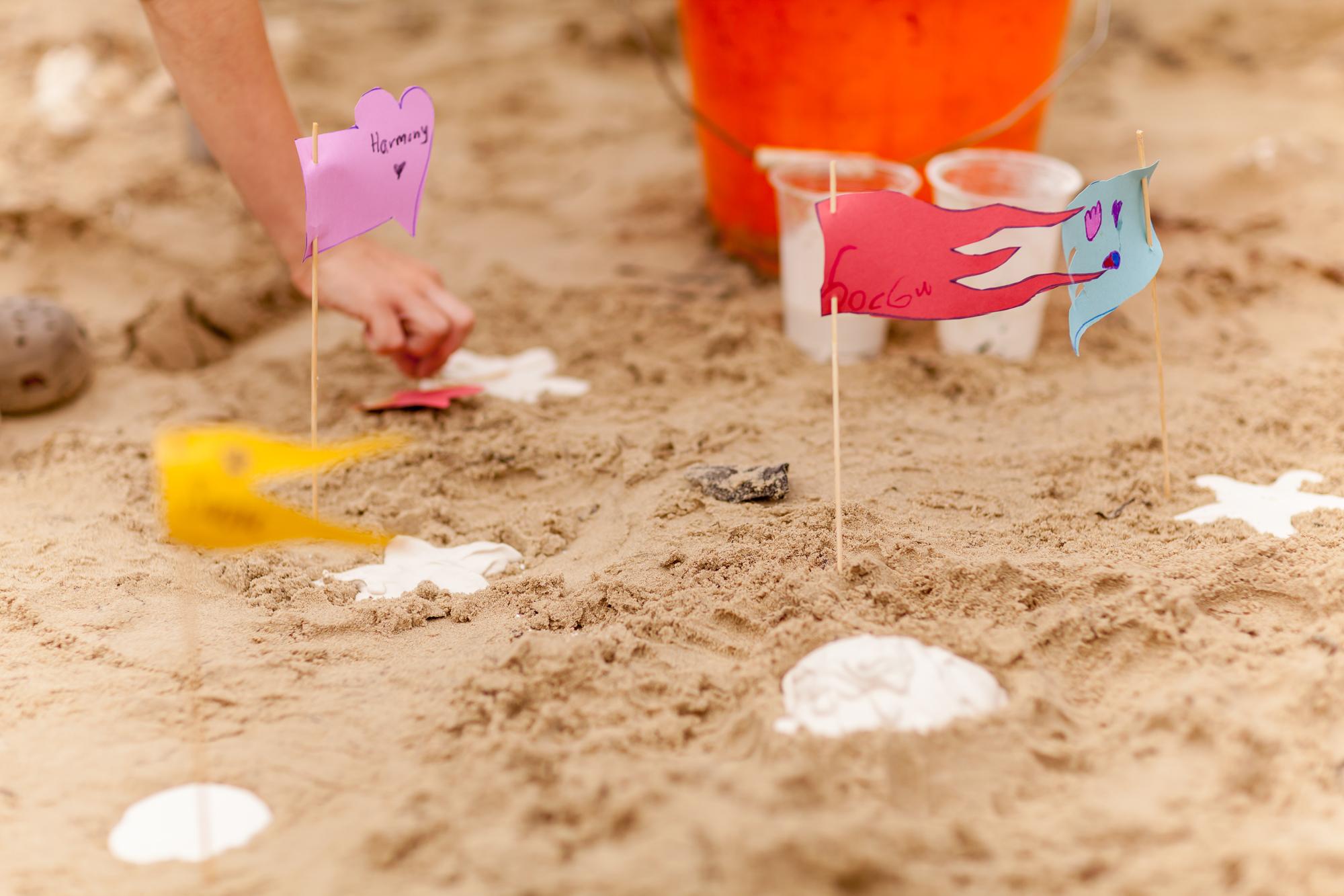 Flags mark the sandcast seacreature spots...