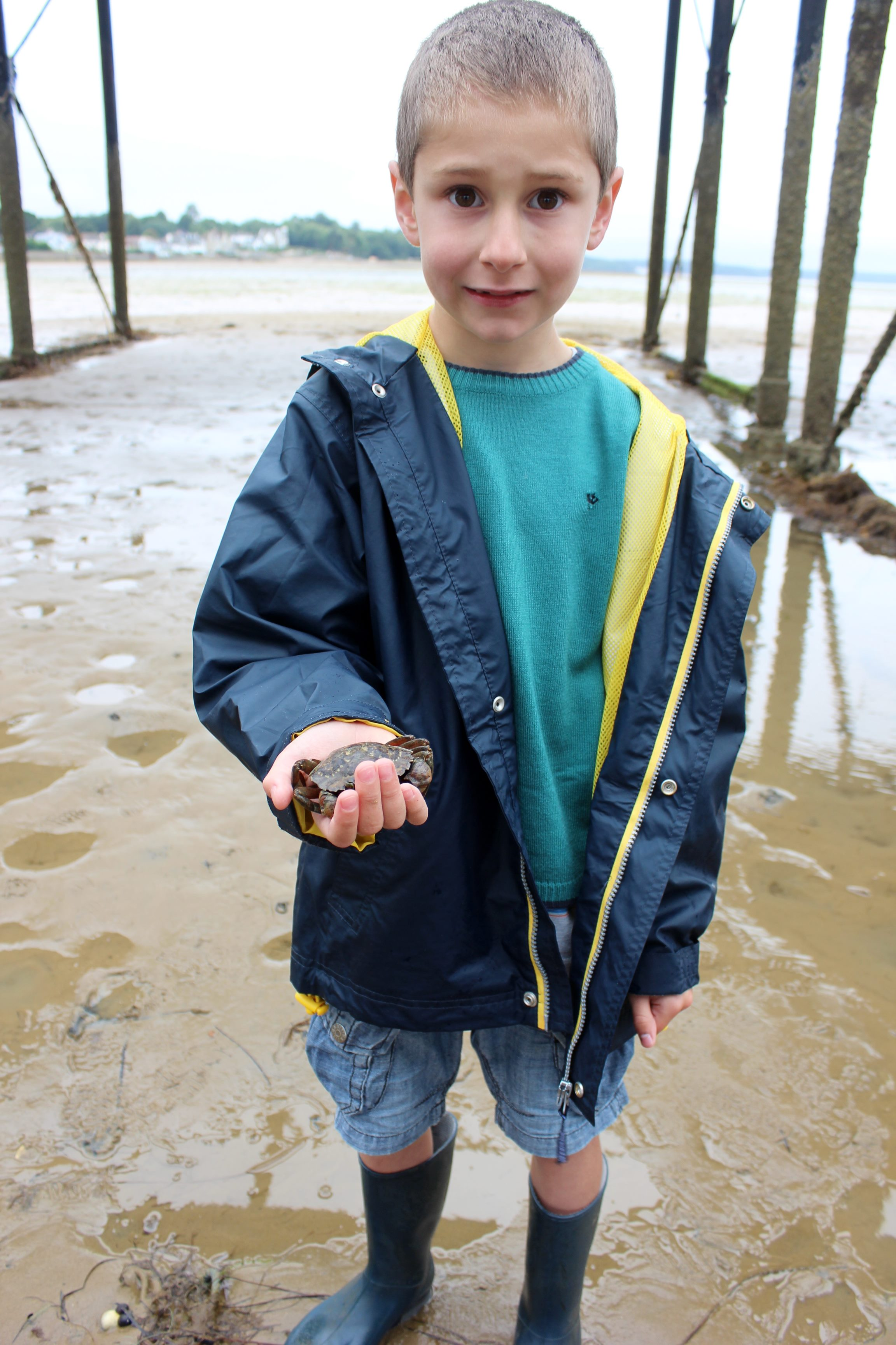 Alfie rescues a crab from marine litter & fishing line
