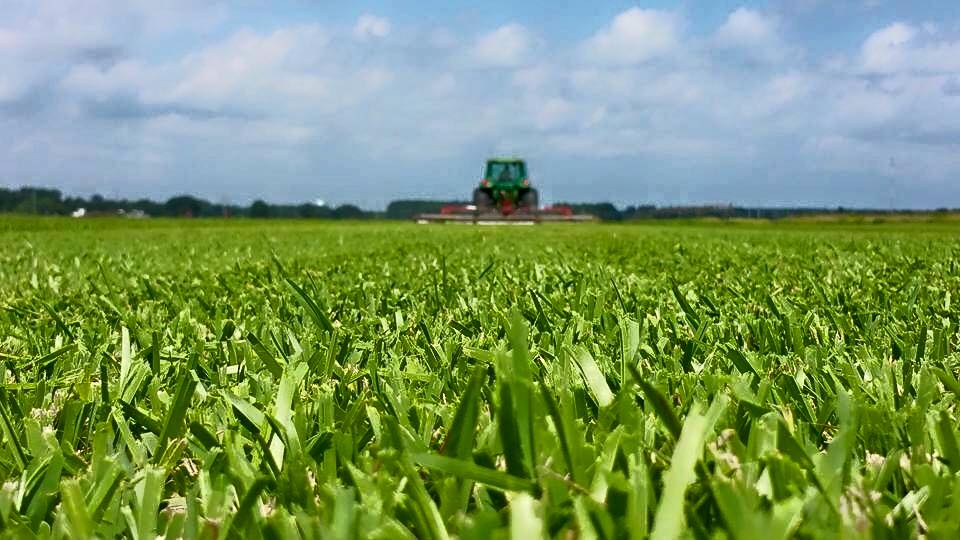 Over the years,this industry has taken Woerner Turf around the world. -