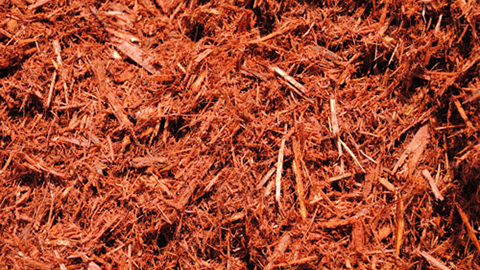 - Red Mulch