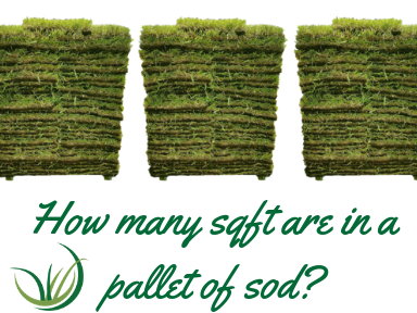 How many sqft are in a pallet of sod_.png