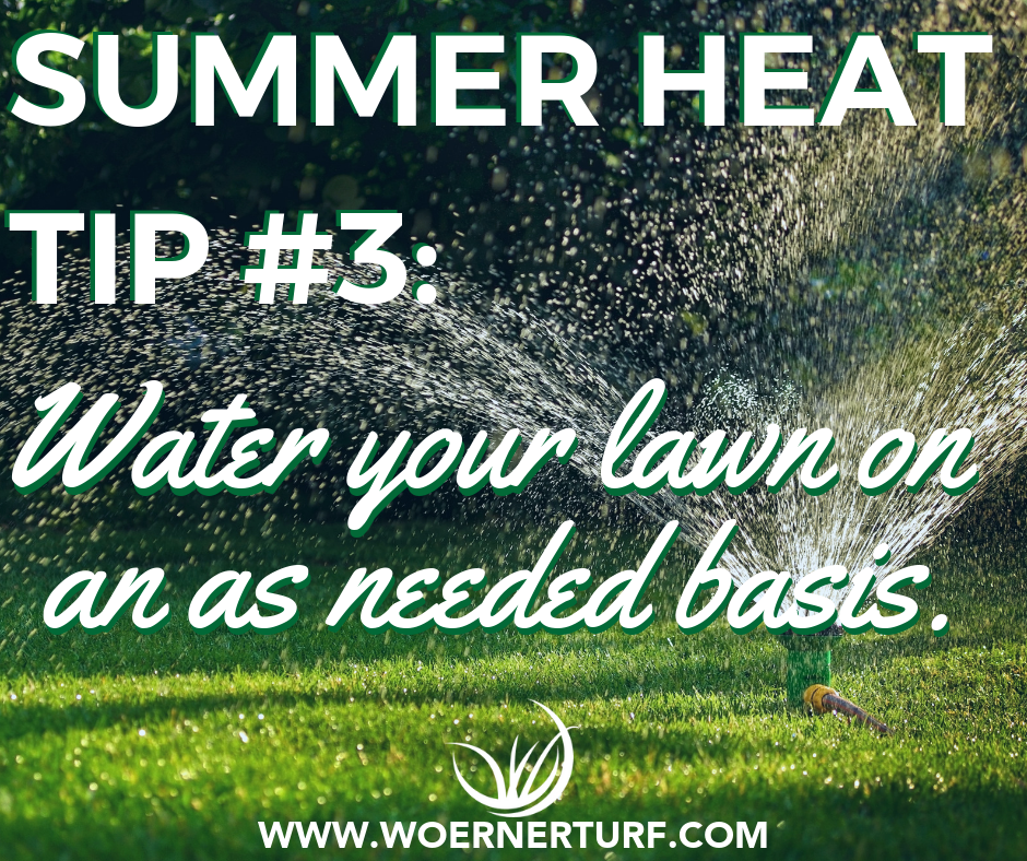 Summer Heat Tip #3.png