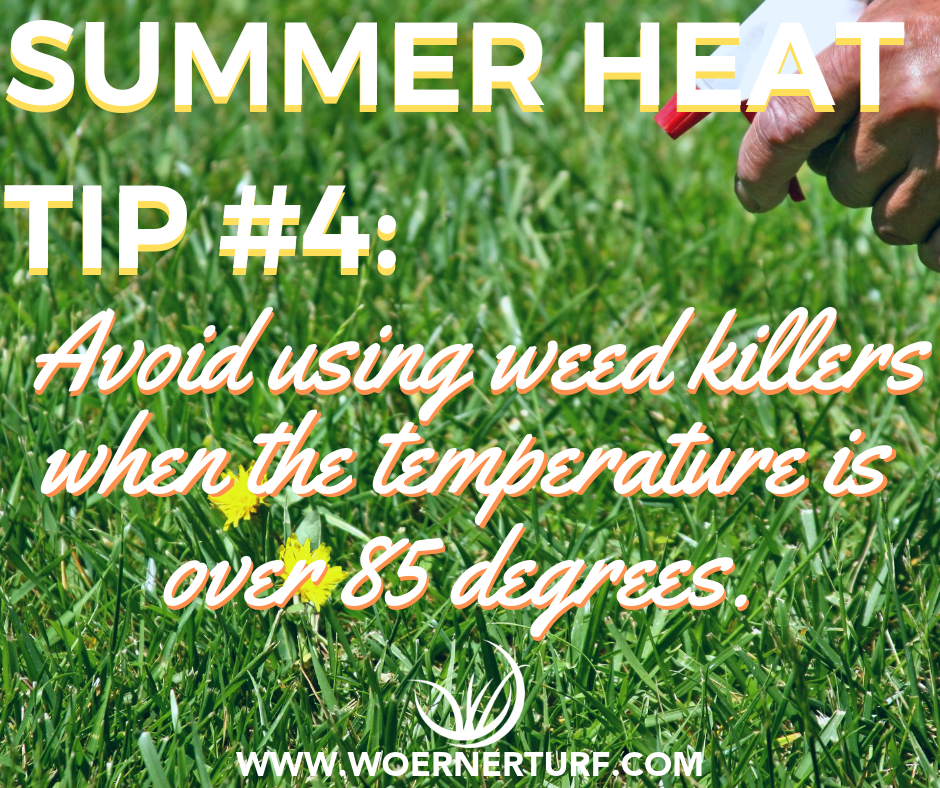 Summer Heat Tip #4.png