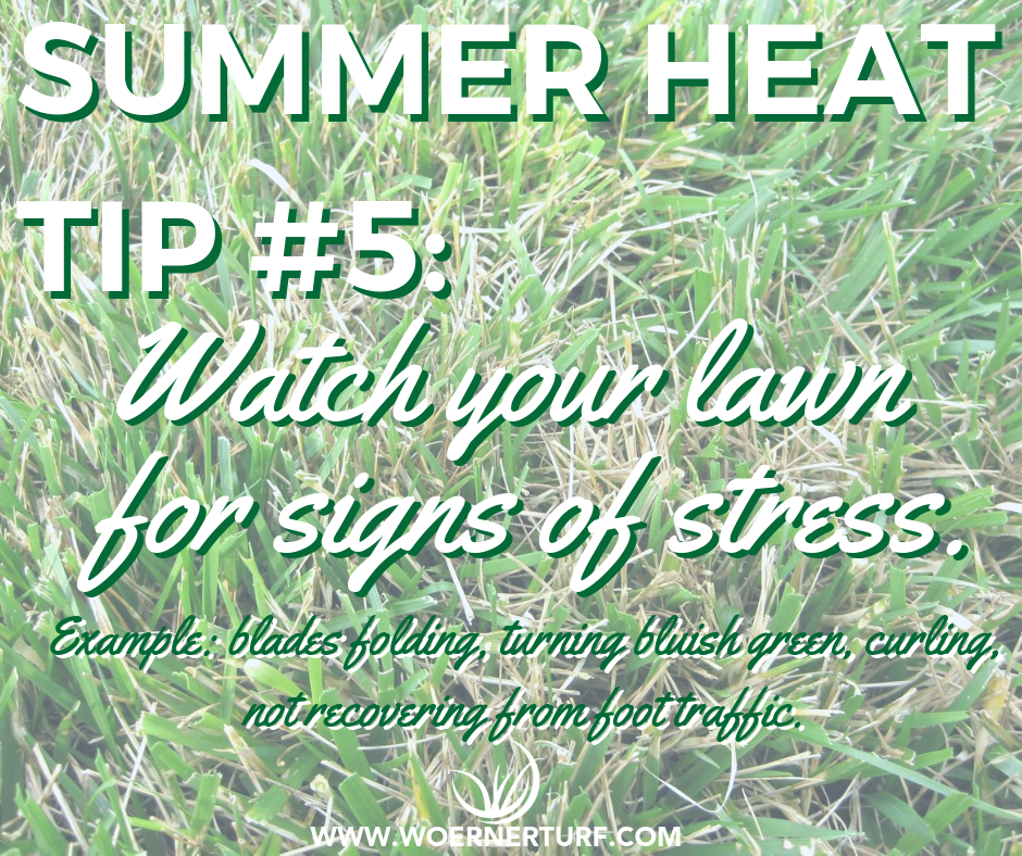 Summer Heat Tip #5.png