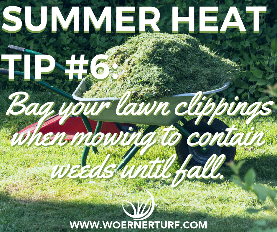 Summer Heat Tip #6.png