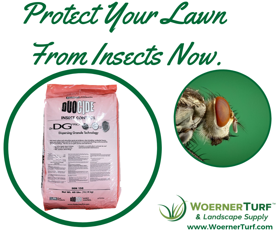 Protect from insects (2).png