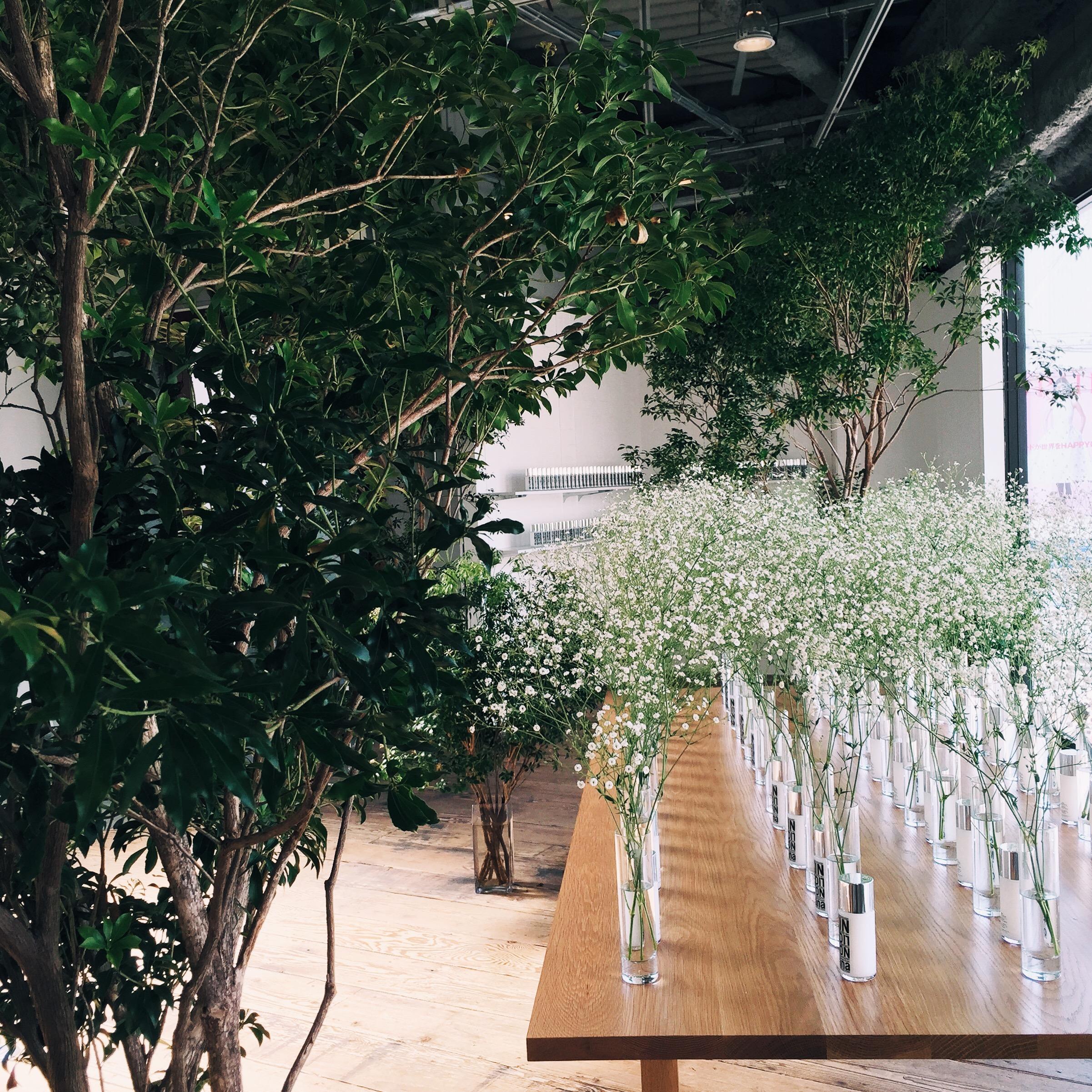 Organized plants
