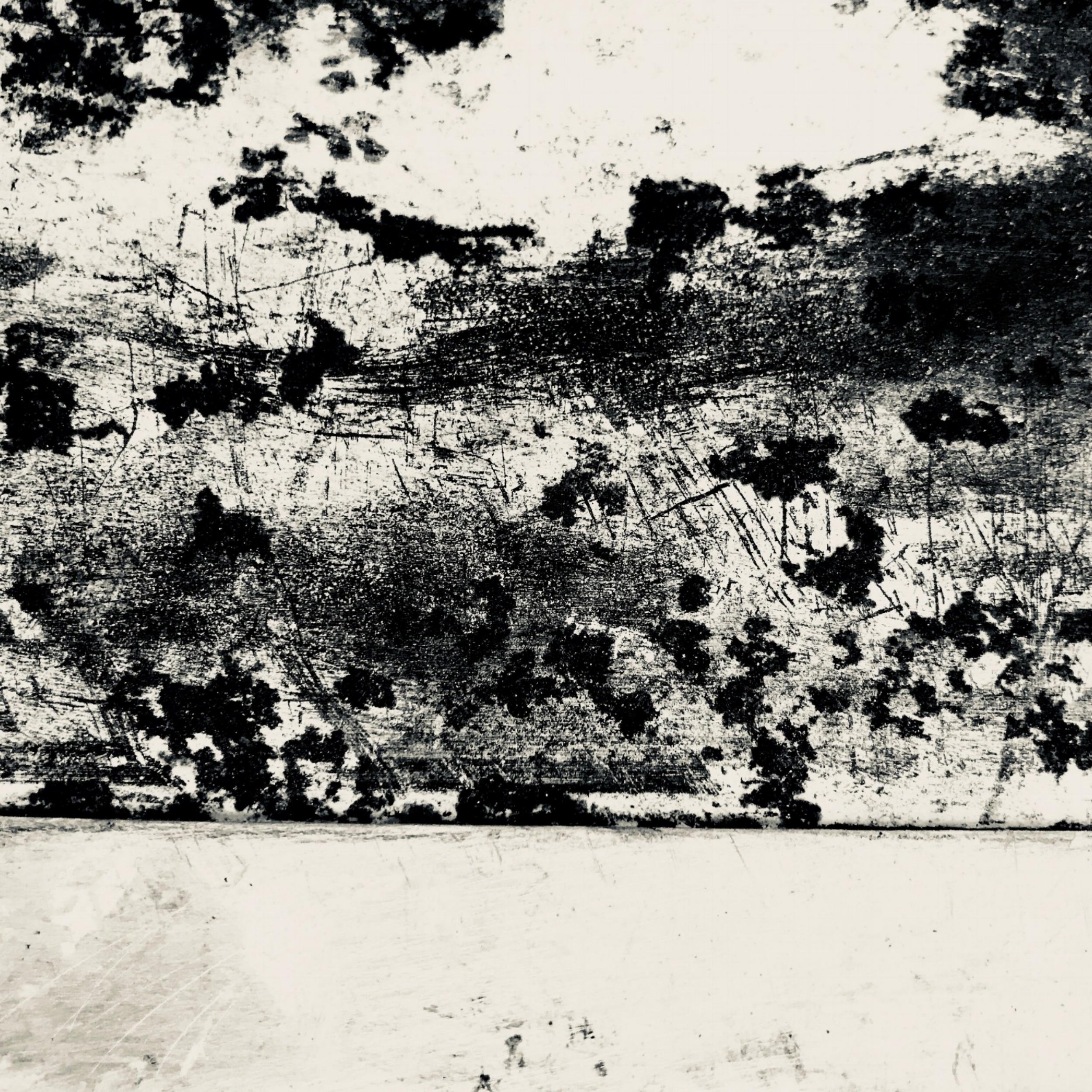 #15 b/w landscrape