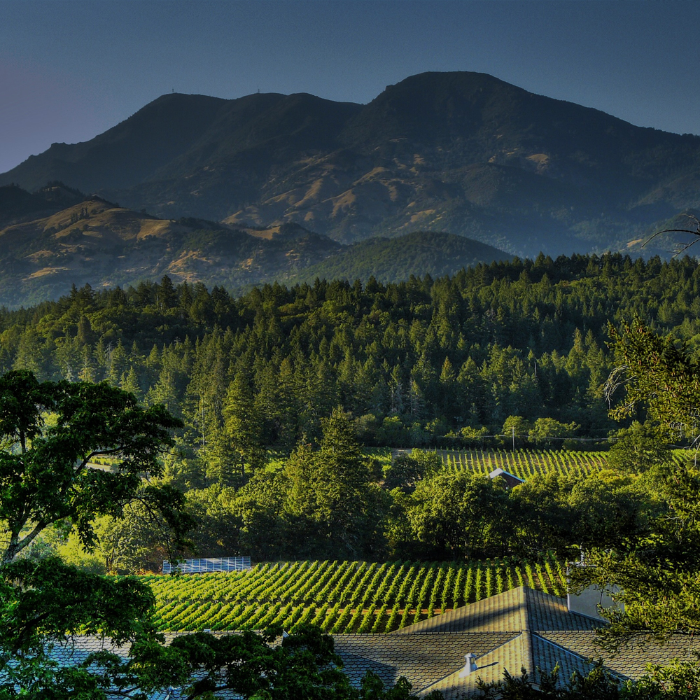 CALISTOGA<strong>Located in far northern Napa County, Calistoga has a distinctly relaxed feel with small town charm.</strong>