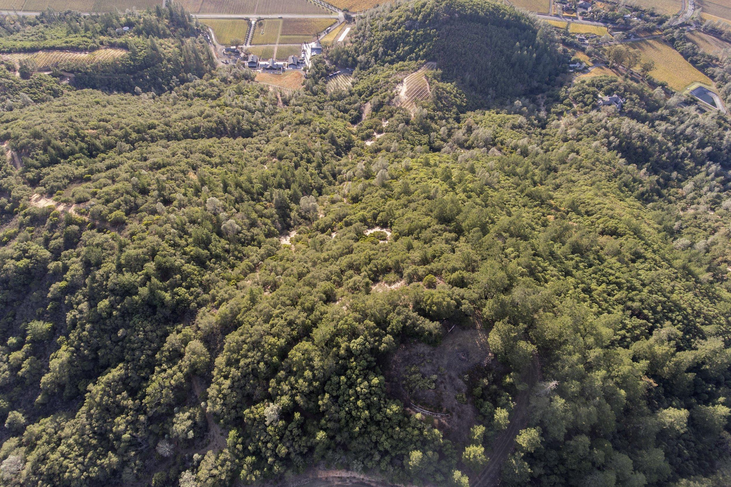 631_Lommel_Road_Aerial___16.jpg