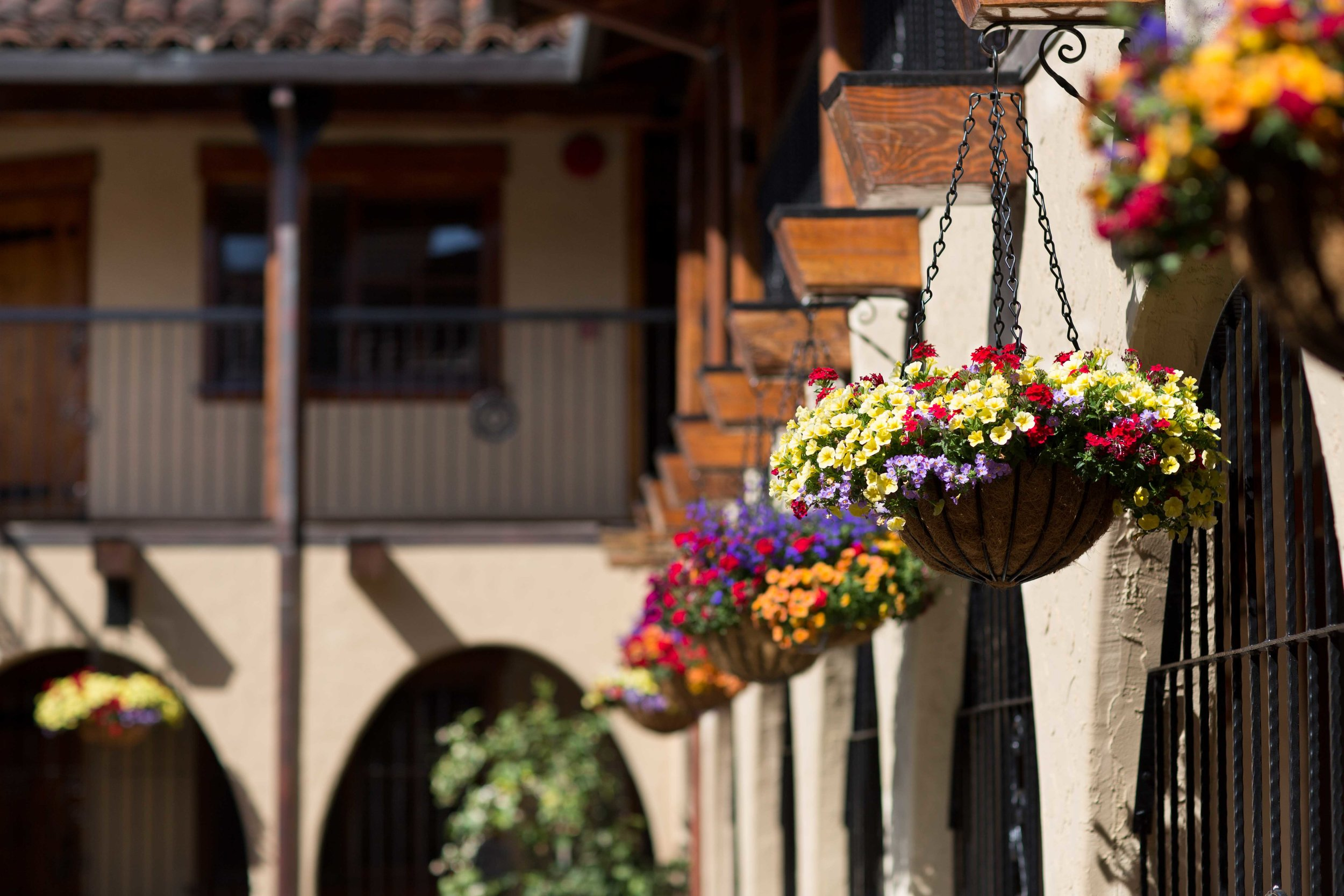 Rancho_Caymus_59_HR.jpg