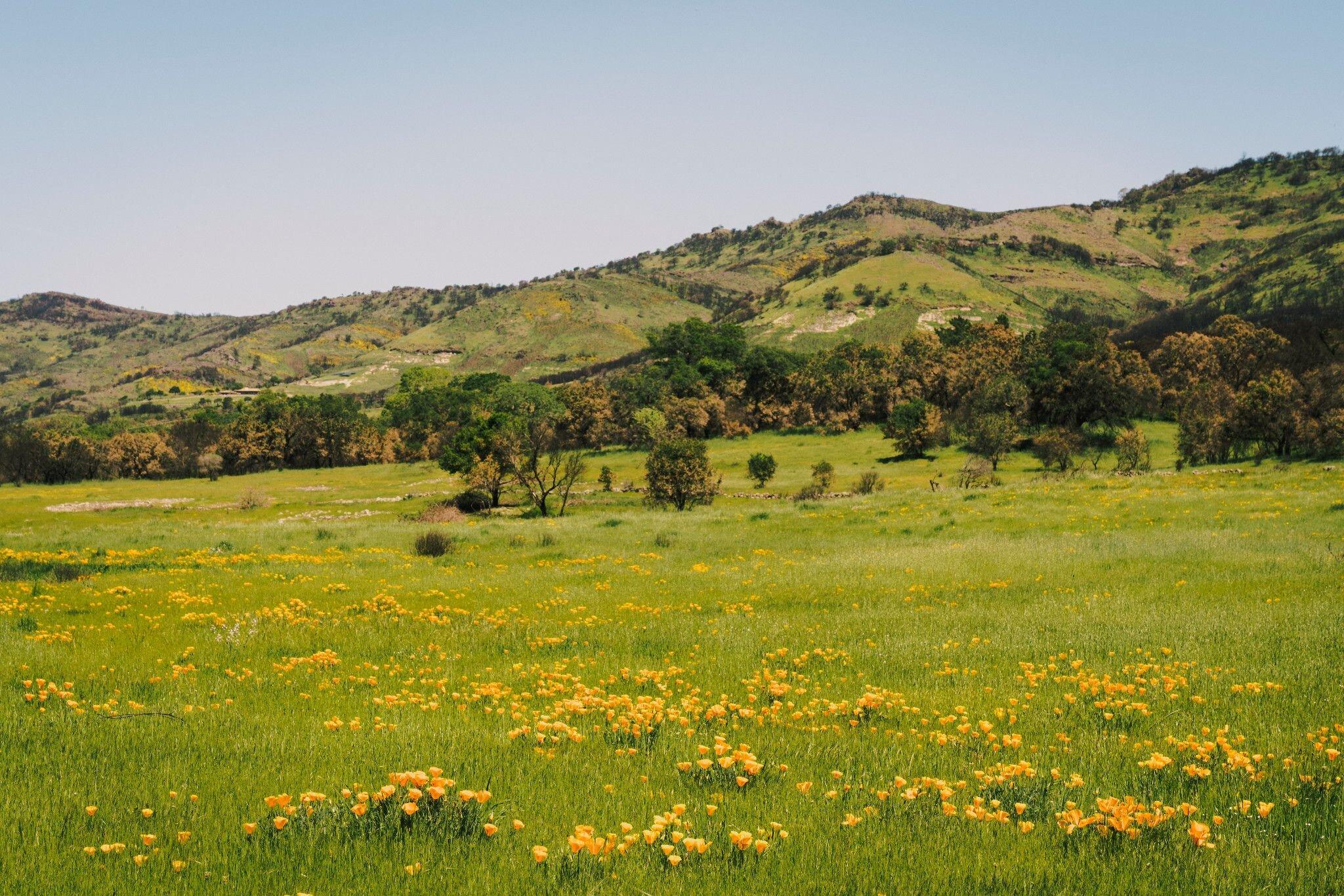 $3.250M | Big Ranch Road - Off Market