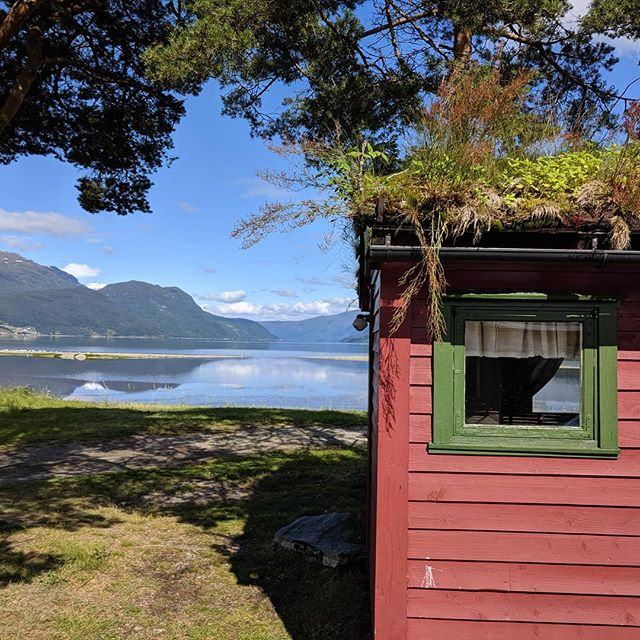 Seriously amazing. This was our cabin on the fjord. Yes, things were growing on the roof on purpose!  #nofilter #fjord #norway
