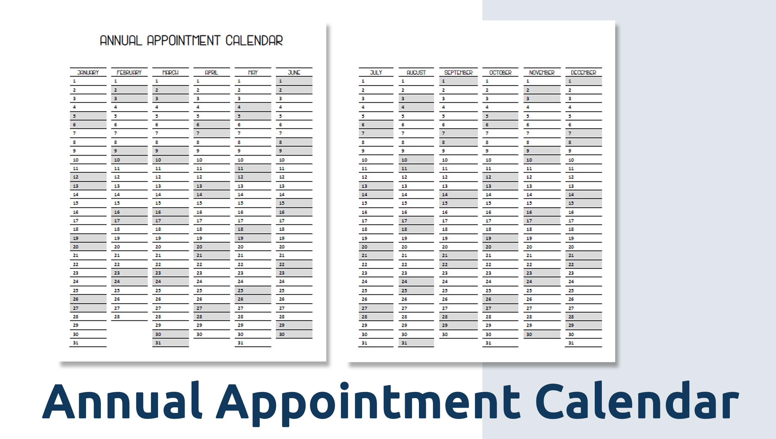 annual appointment calendar.jpg