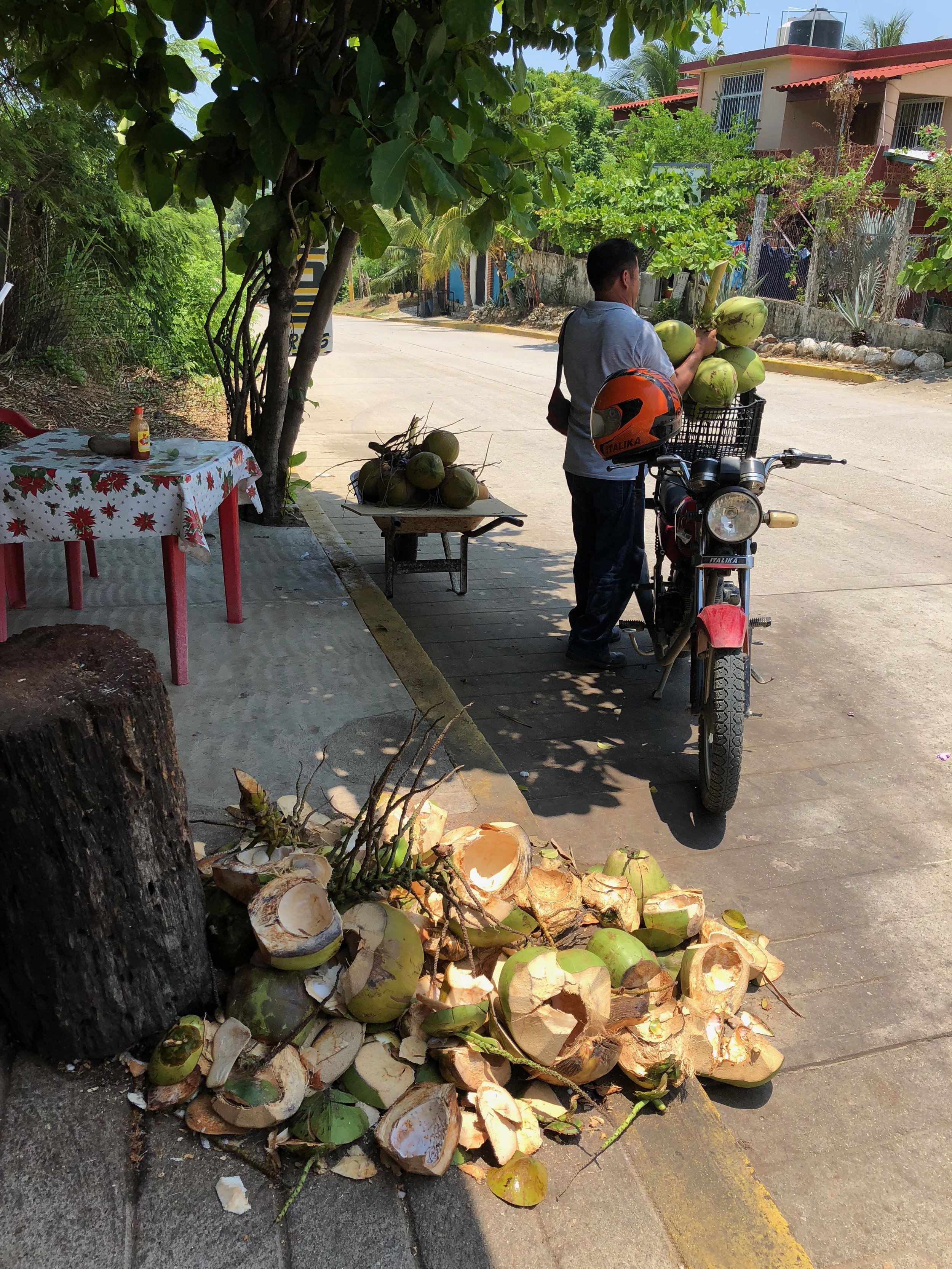 This man was buying a bunch of coconuts to take home with him. In the foreground are the day's coconut scraps.