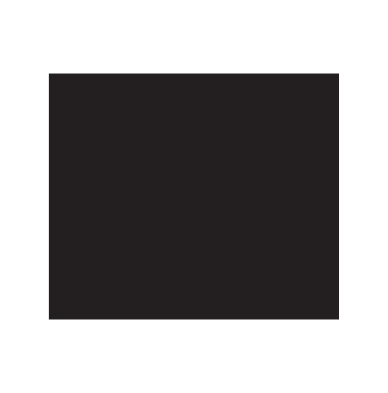 SoulSurvivor.png