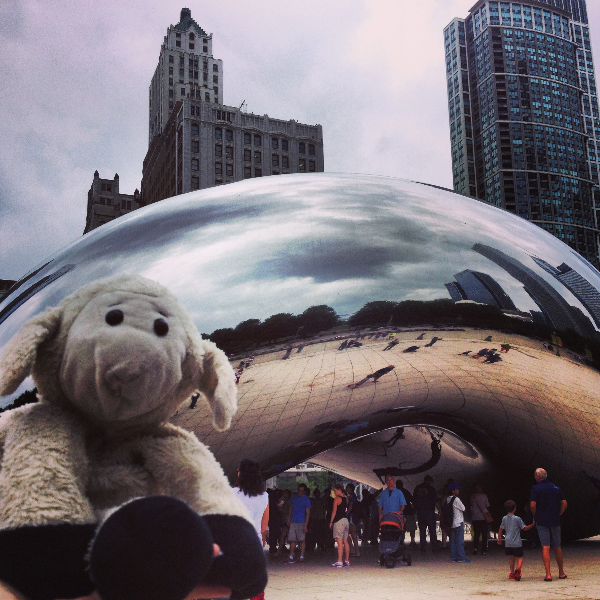 sheep selfie at the Bean in Millenium Park, Chicago