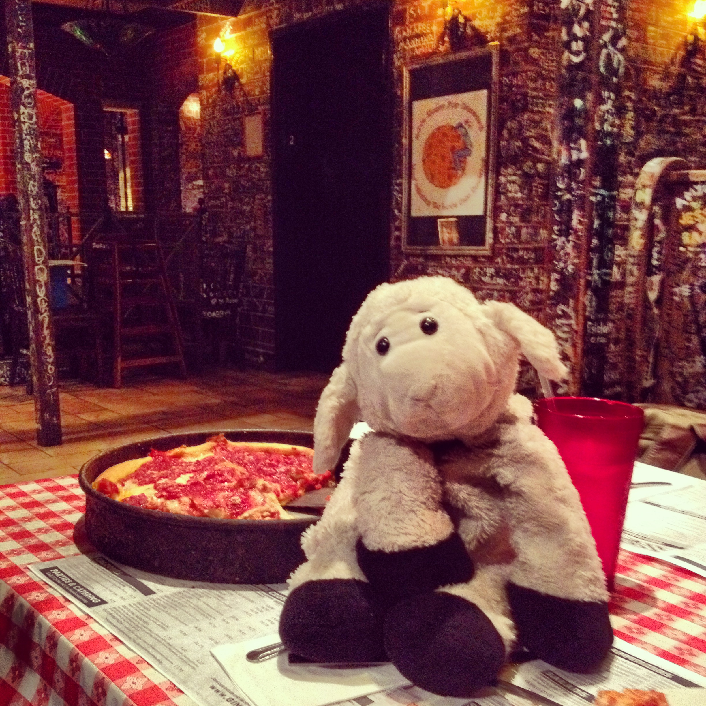 sheep visits ginos chicago style deep dish pizza in Chicago IL