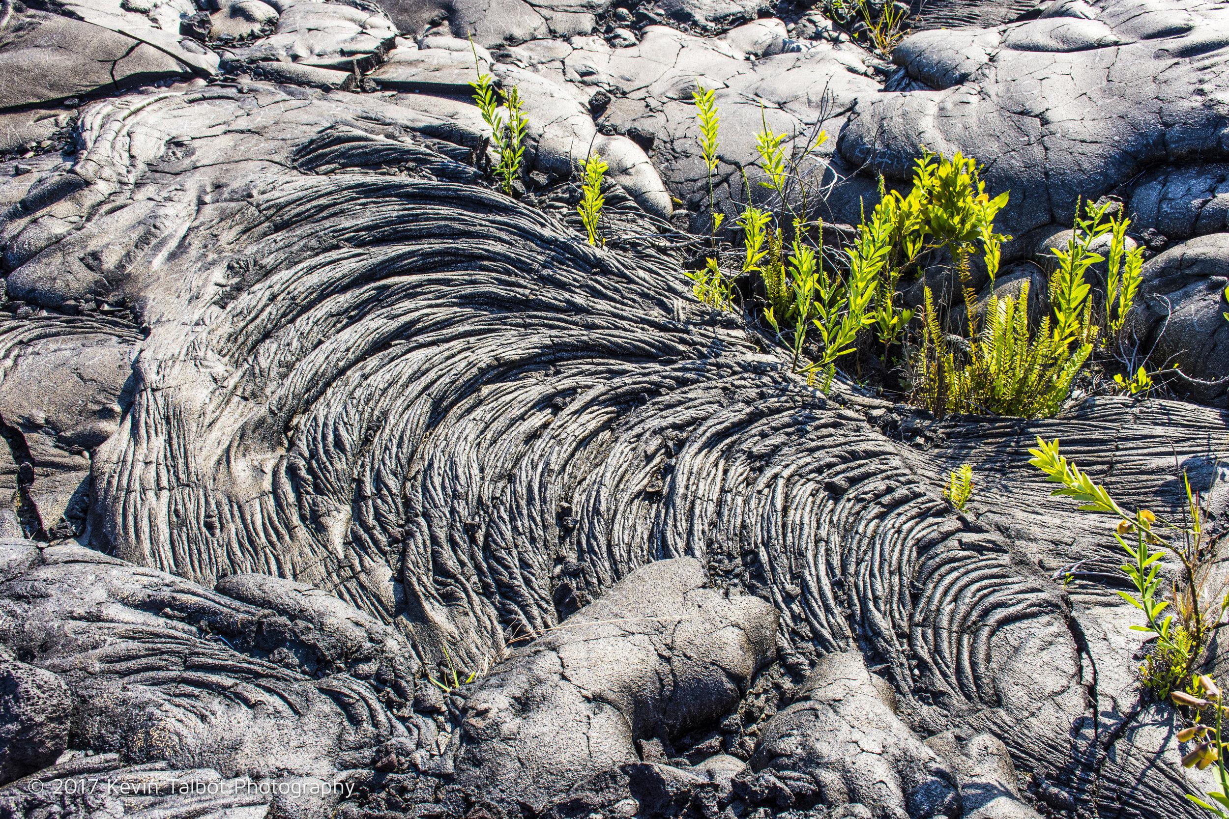 lava fields-12.jpg