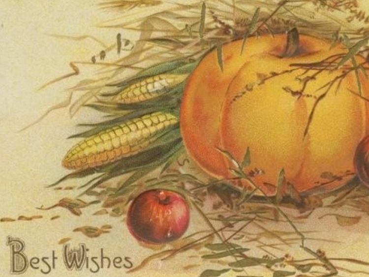 Gastro Obscura - How Pumpkin Pie Sparked a 19th Century Culture War. See more at Atlas Obscura.