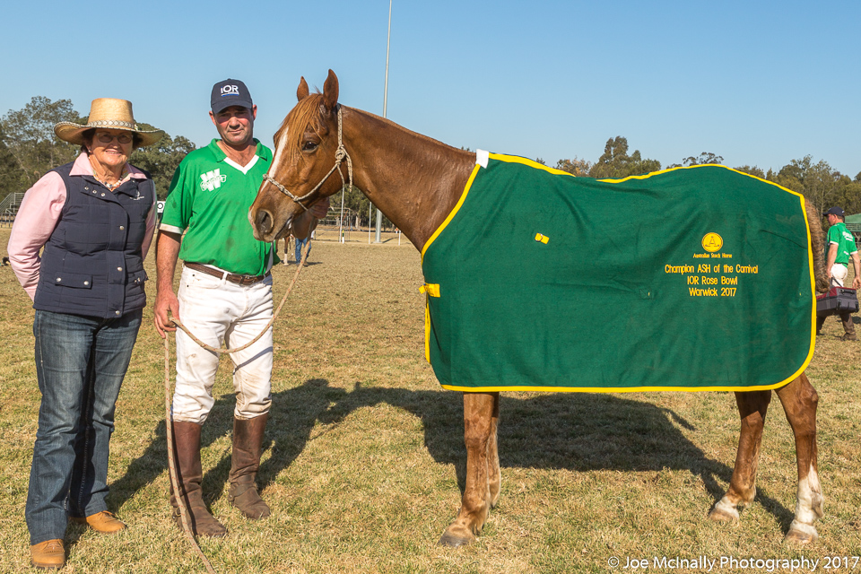 """Champion Australian Stock Horse for the IOR Petroleum Rosebowl Final – """"Radkef Solution"""" with Rider – Stuart Shepherd and Lorna Fanning – Director of ASH Society"""