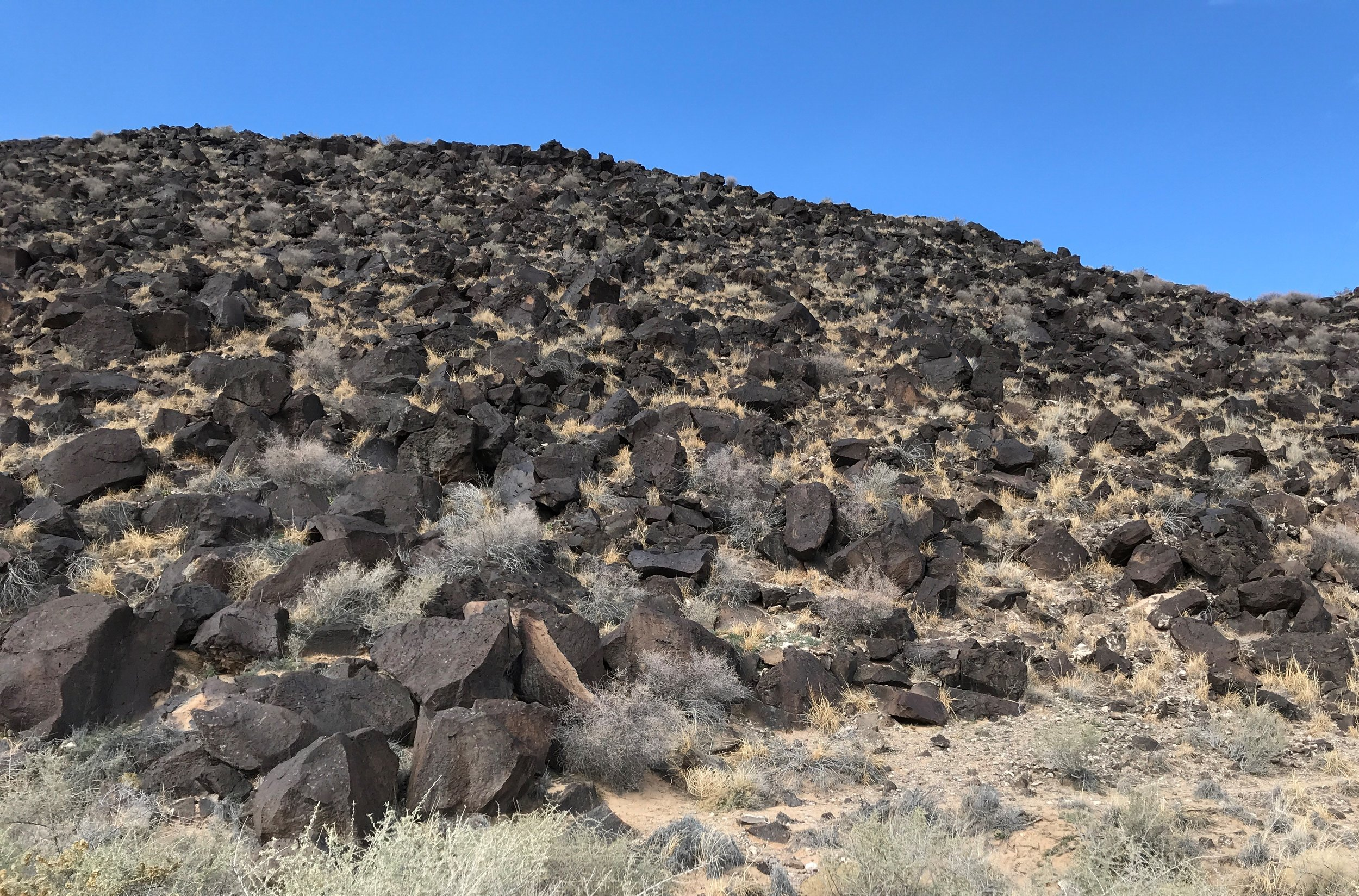 Rinconada Canyon is the remnants of volcanic eruptions 200,000 years ago