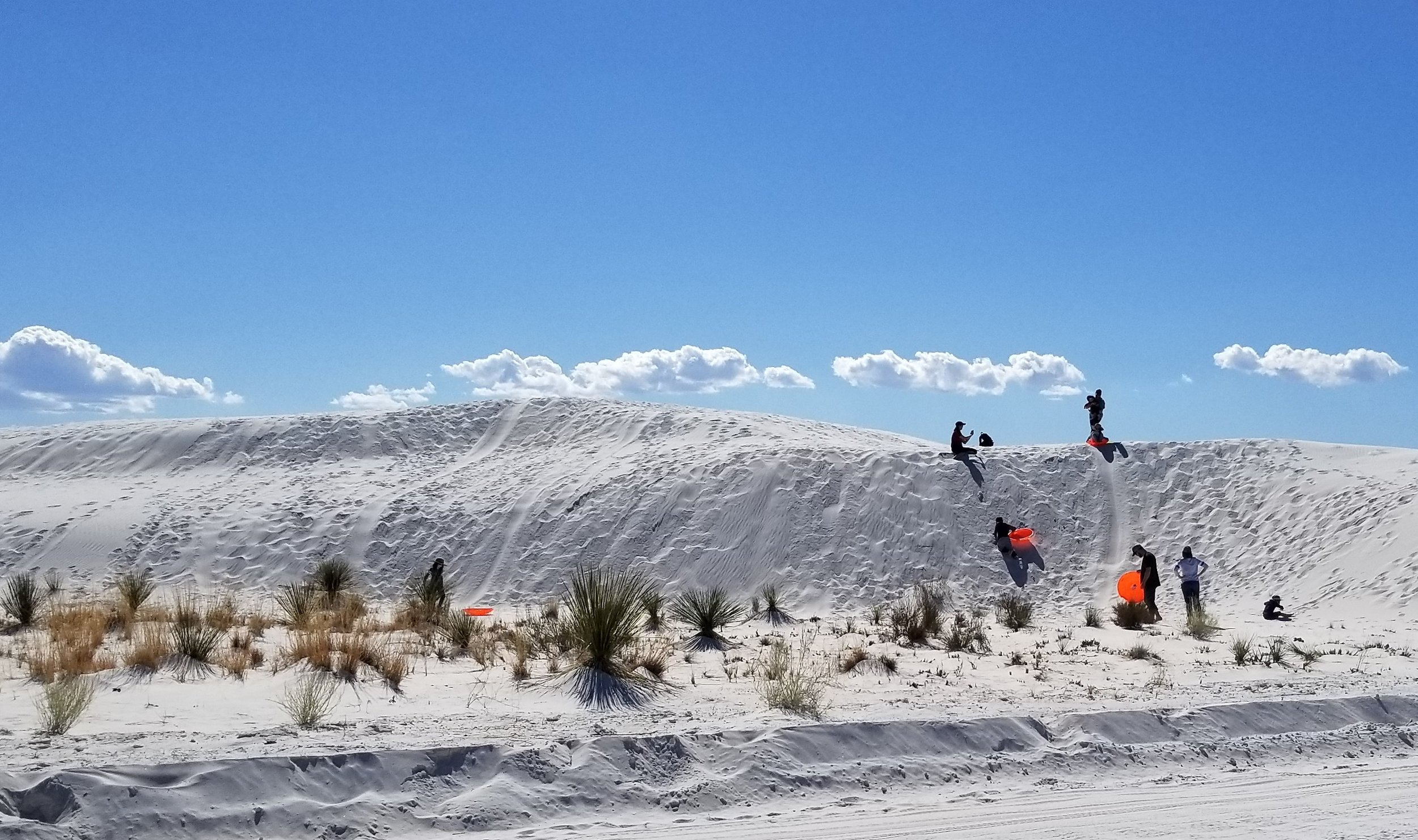 These dunes are firmer and cooler so people sled down them