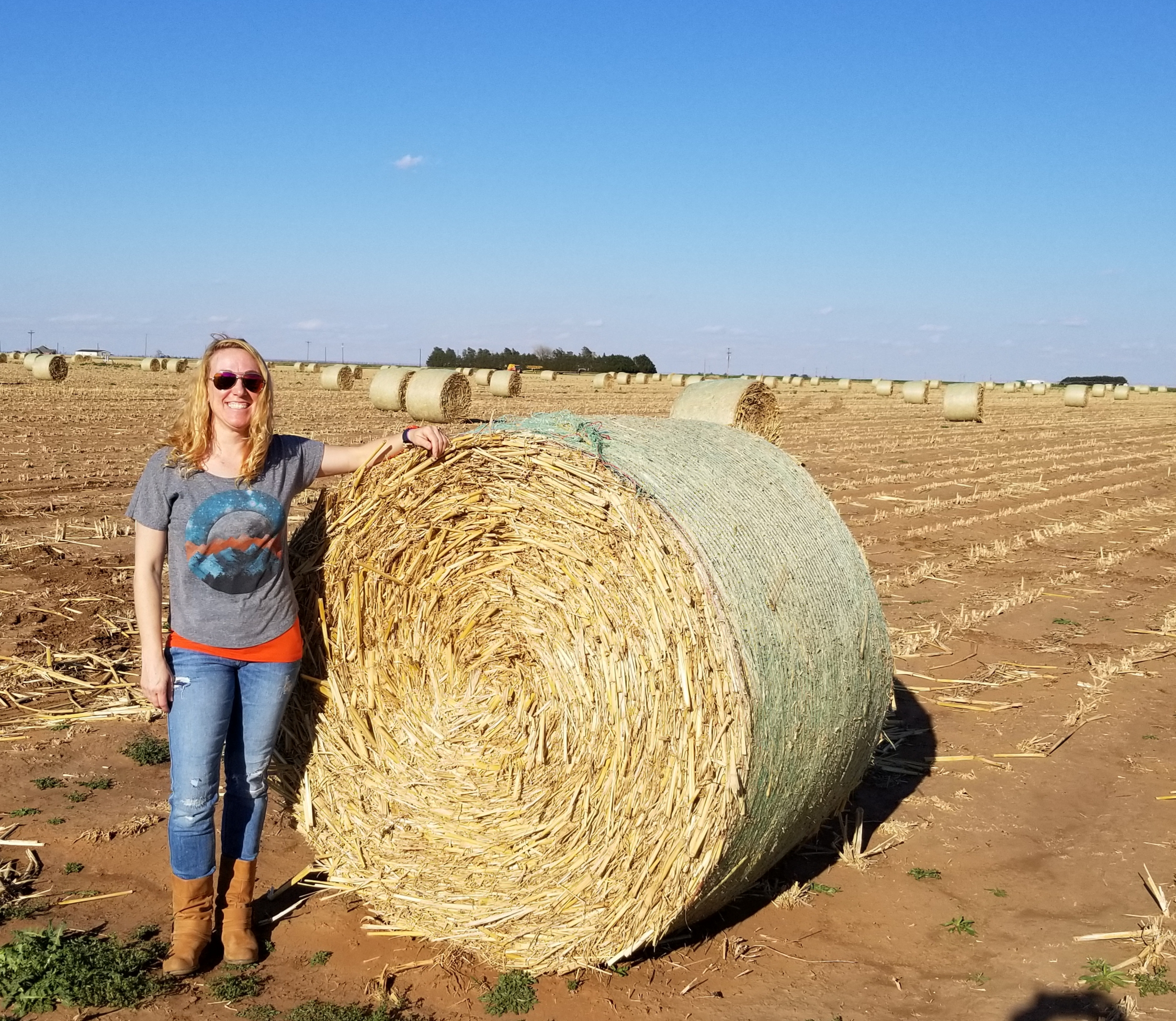 Round bales are about 1000-1500 lbs each.