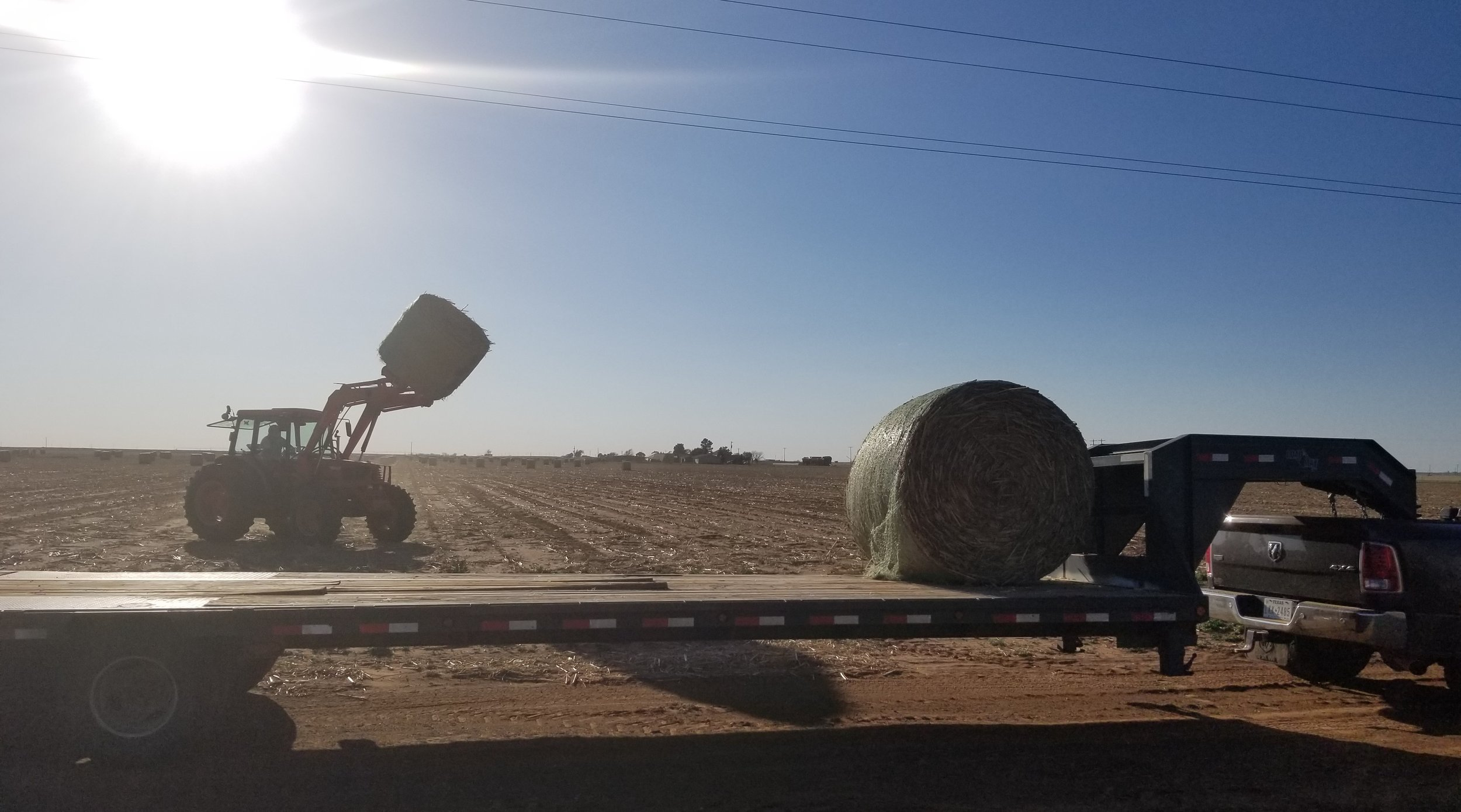 Loading up bales for a delivery to New Mexico that night!