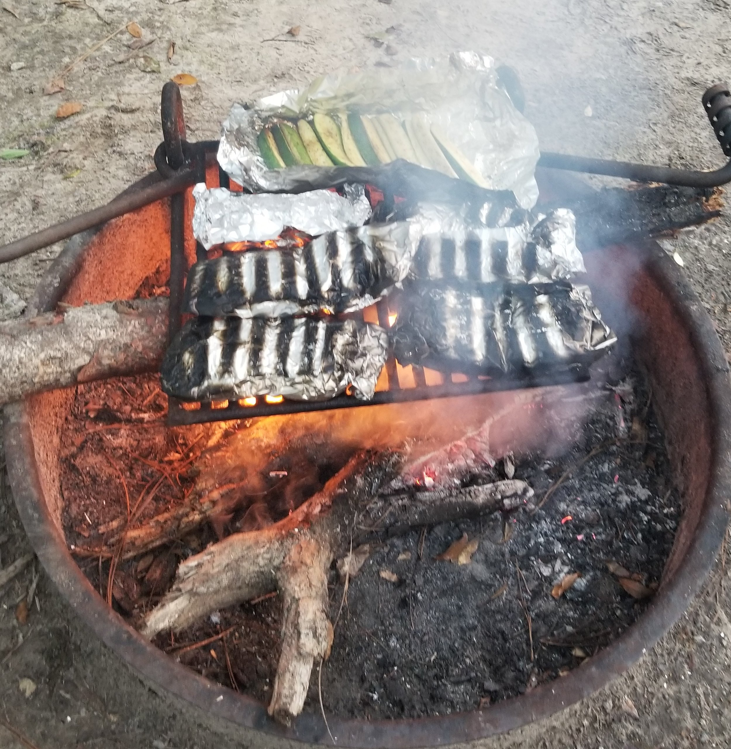 Campfire dinner of chicken, fish and zucchini