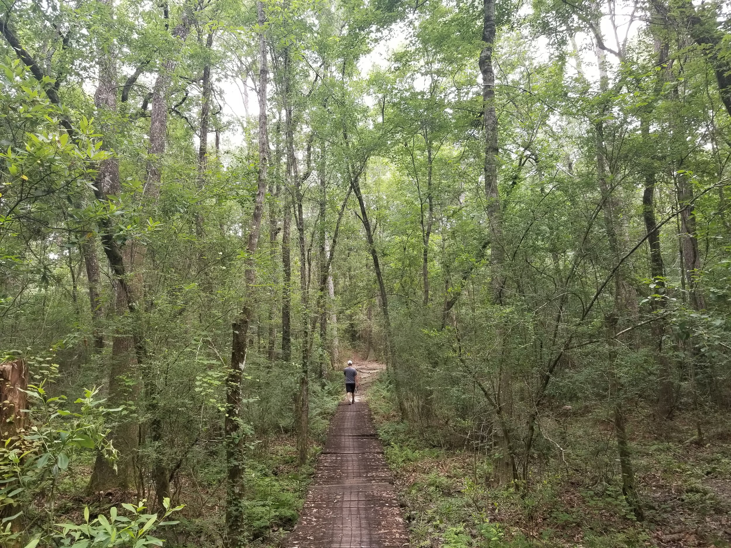 The campground had multiple hiking trails and most of the trail was covered with trees which made hiking during the day bearable
