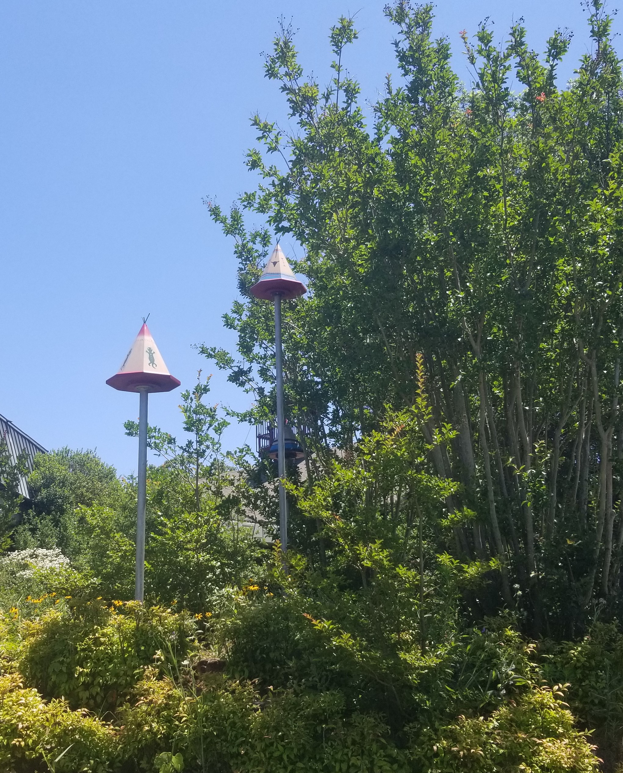 Jeri was fascinated with these amazing bird houses all around the property