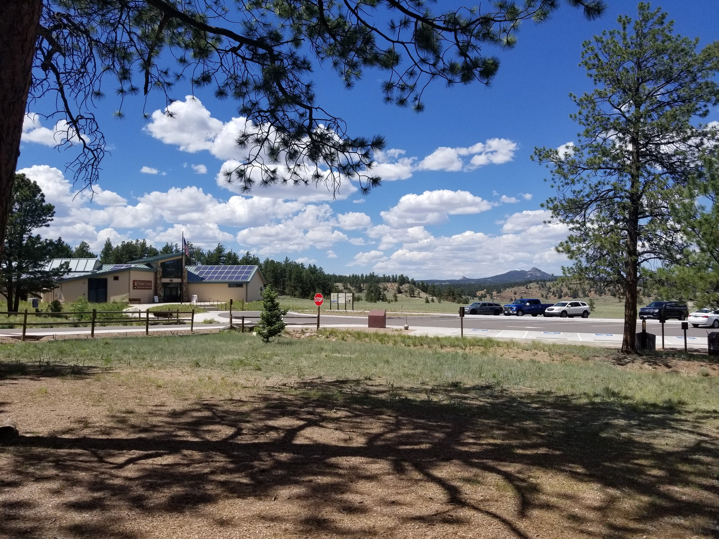 Our view during our picnic lunch at Florissant Fossil Beds