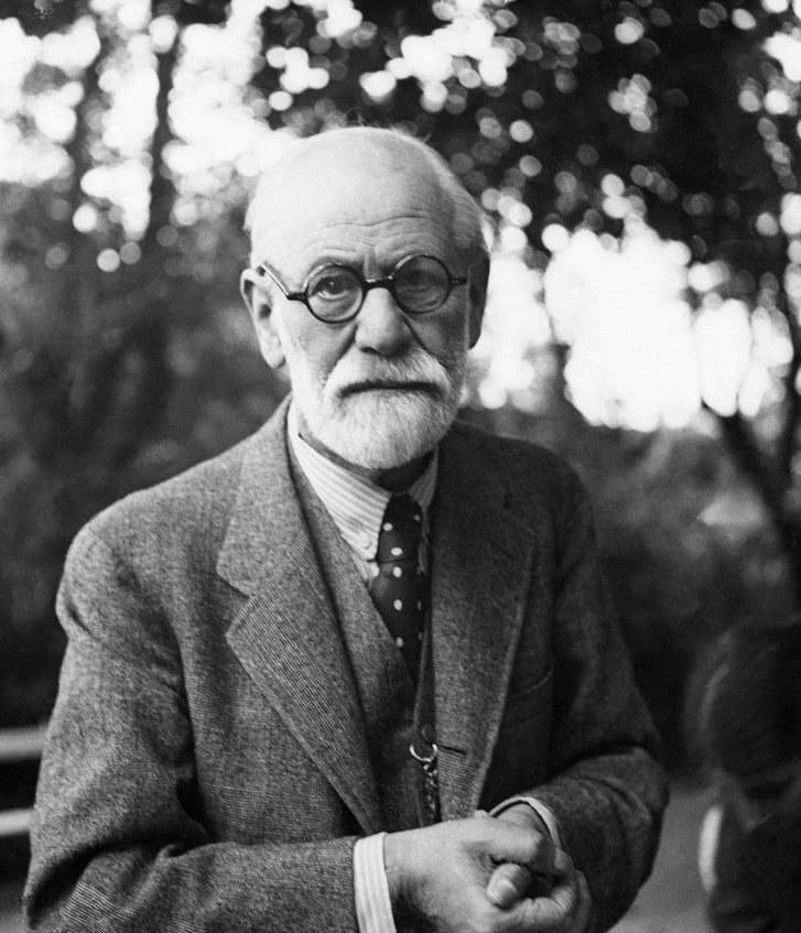 Pomerantz-Freud.jpg