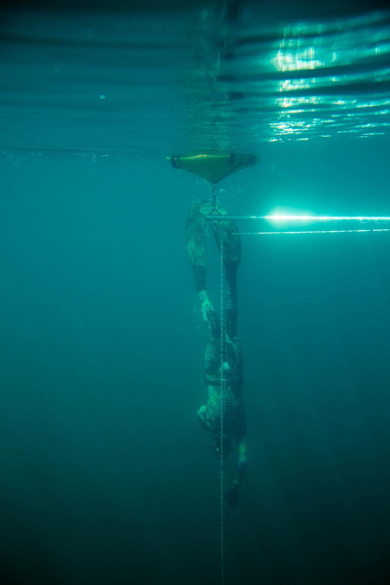 C. Adair, Constant Weight Dive. Photo: Jeremy Koreski