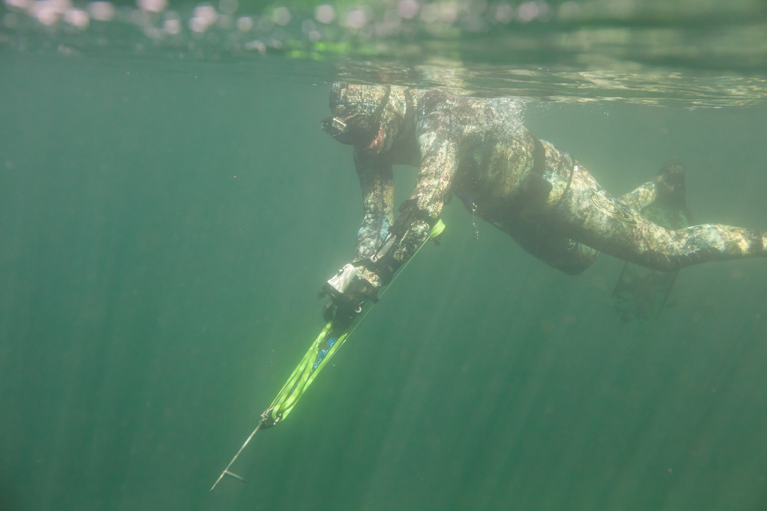 Loading a Speargun while out Harvesting reefs in the Gulf Islands. Photo: Dean Azim