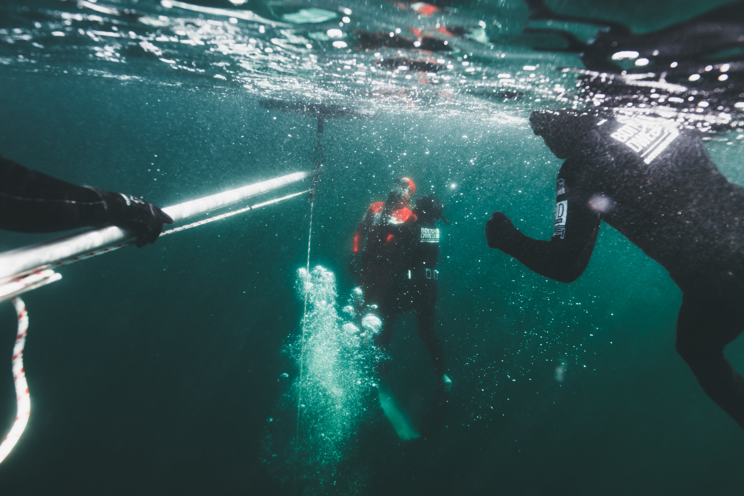 - INTERMEDIATE FREEDIVER