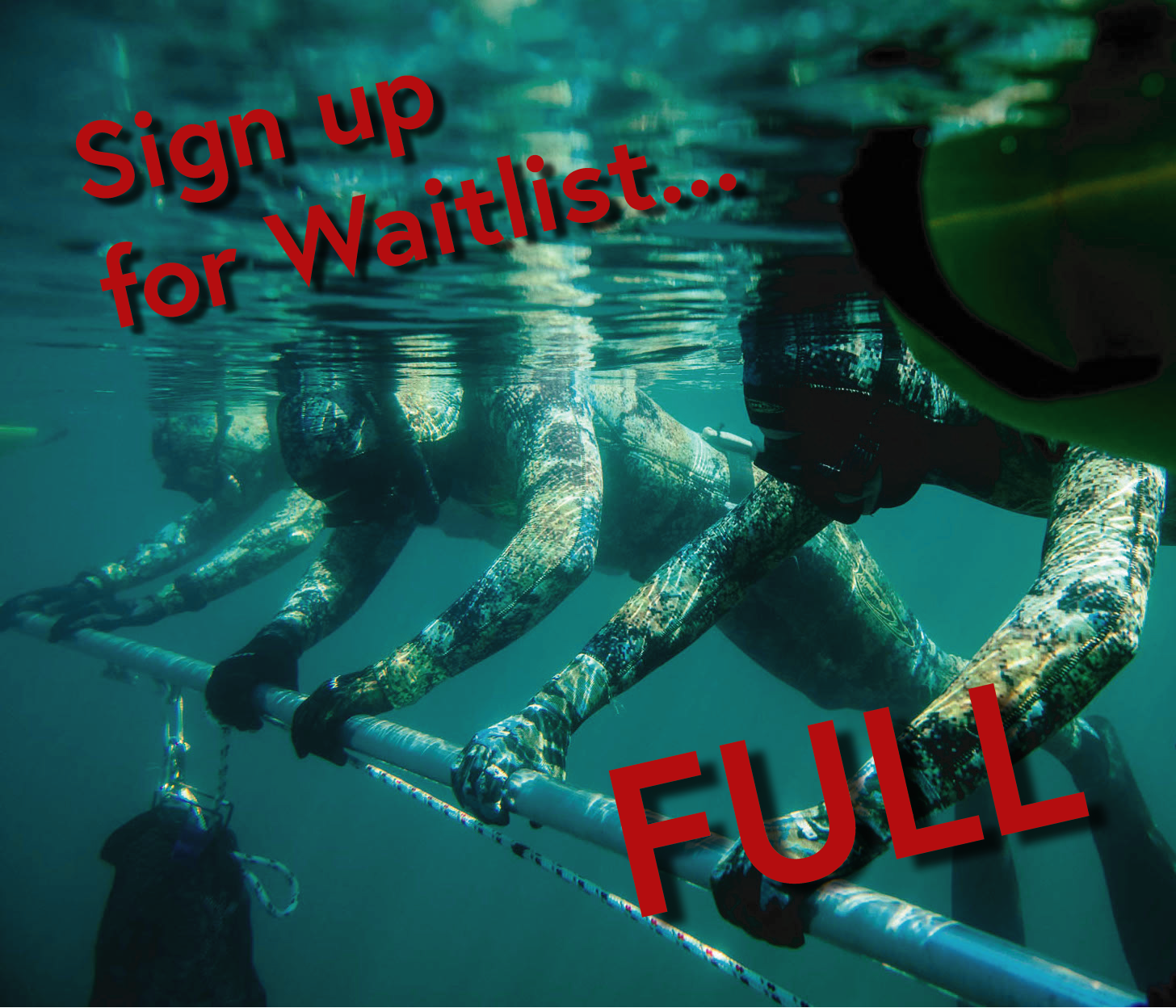 Freediver Course - AUG 9/10/11Course FullSign Up Here for Wailist